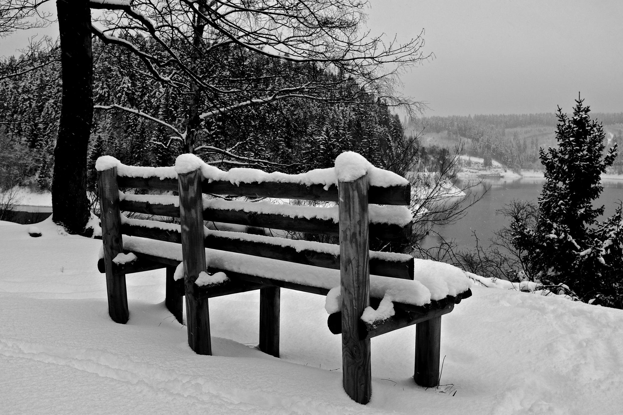 Winter by peterkryzun