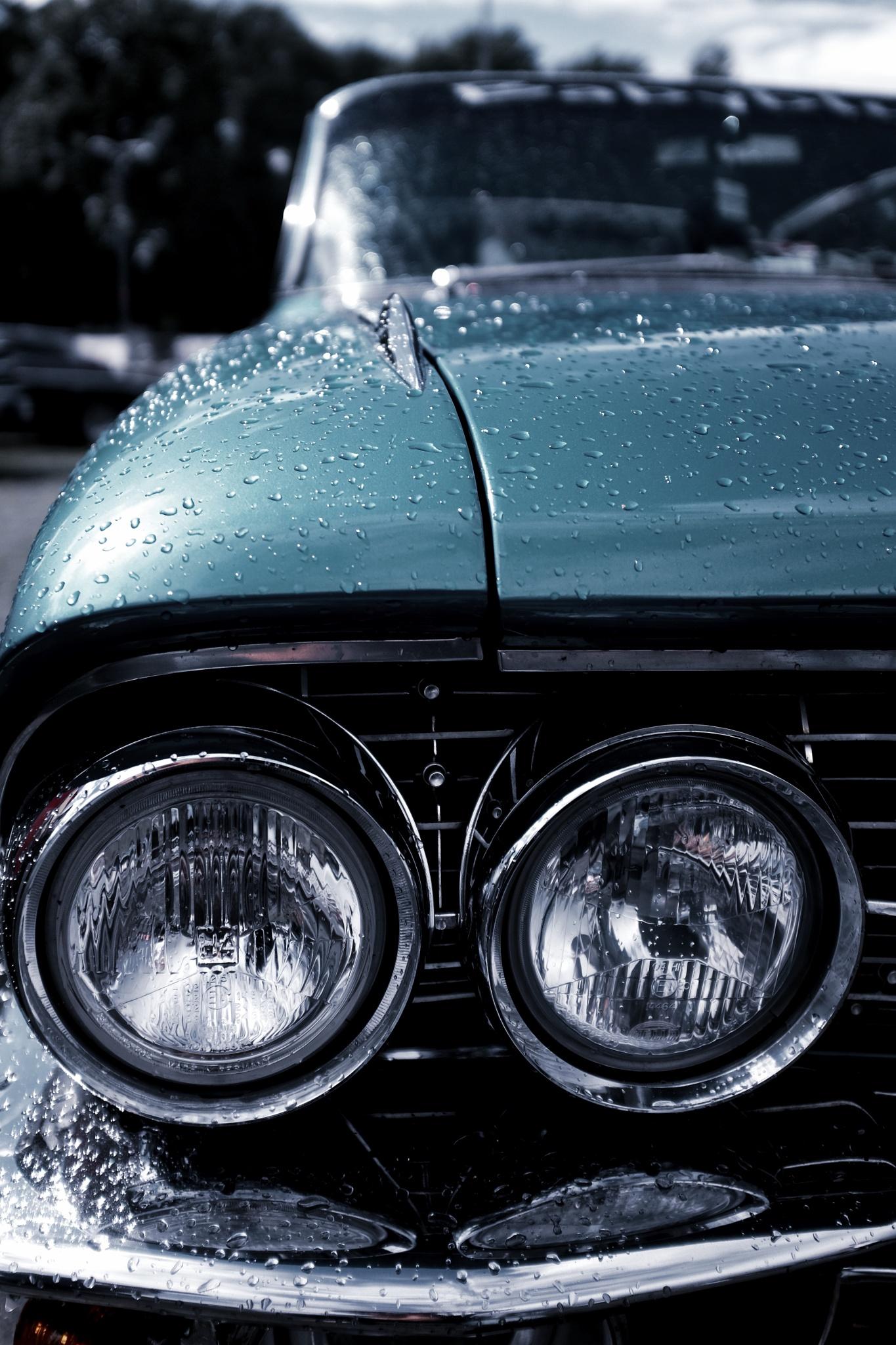 This Car by peterkryzun