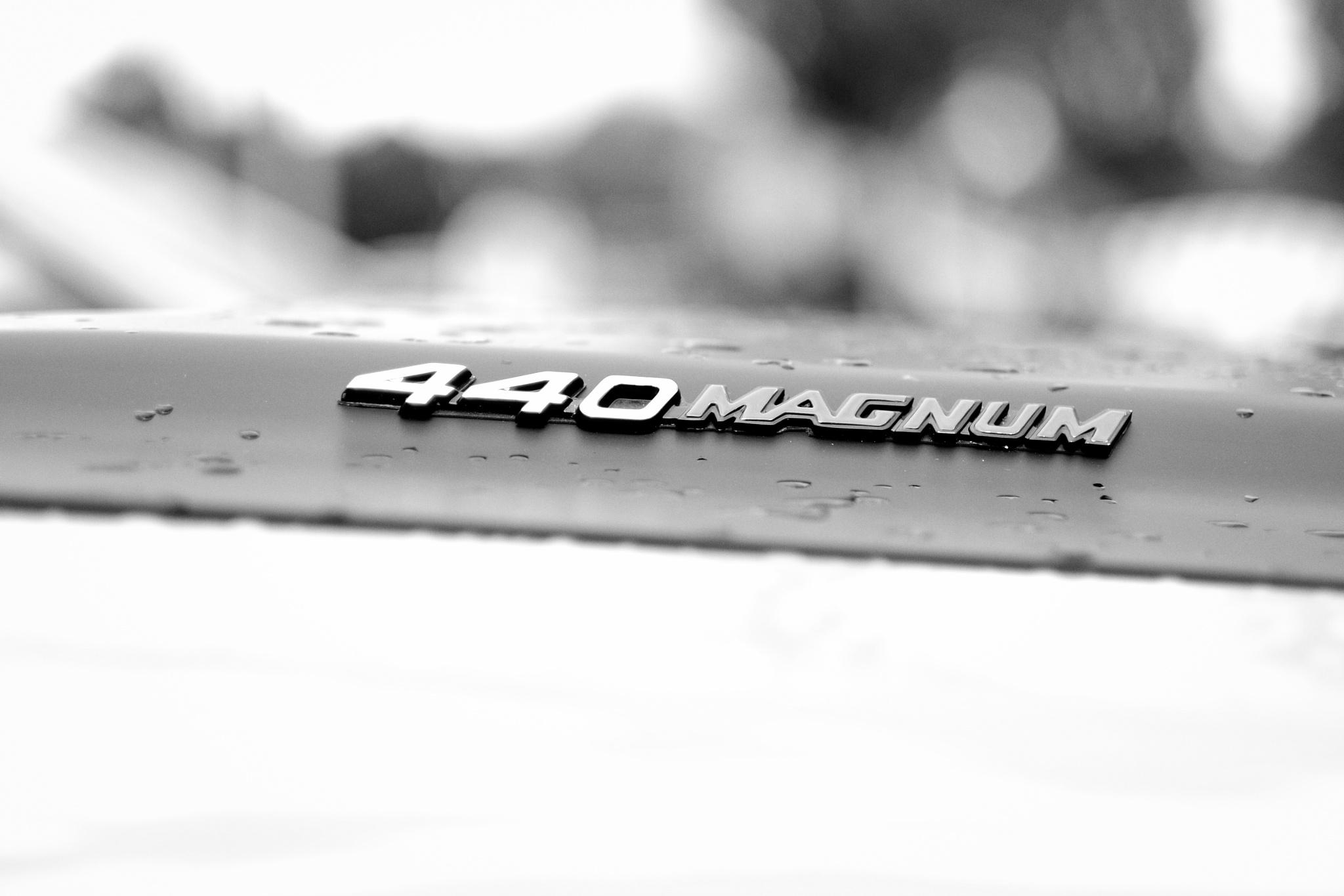 440 Magnum by peterkryzun