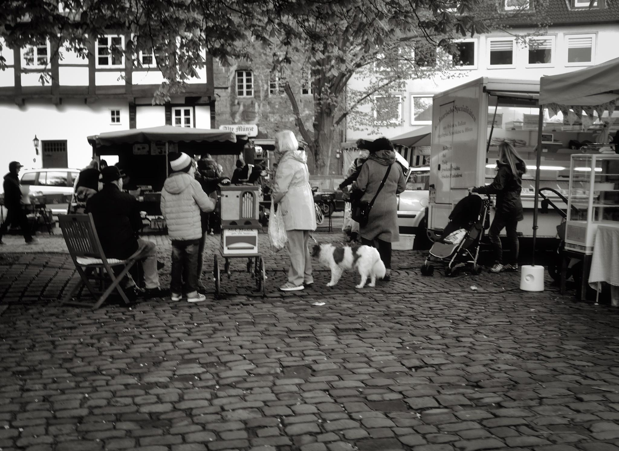 Auf dem Markt by peterkryzun