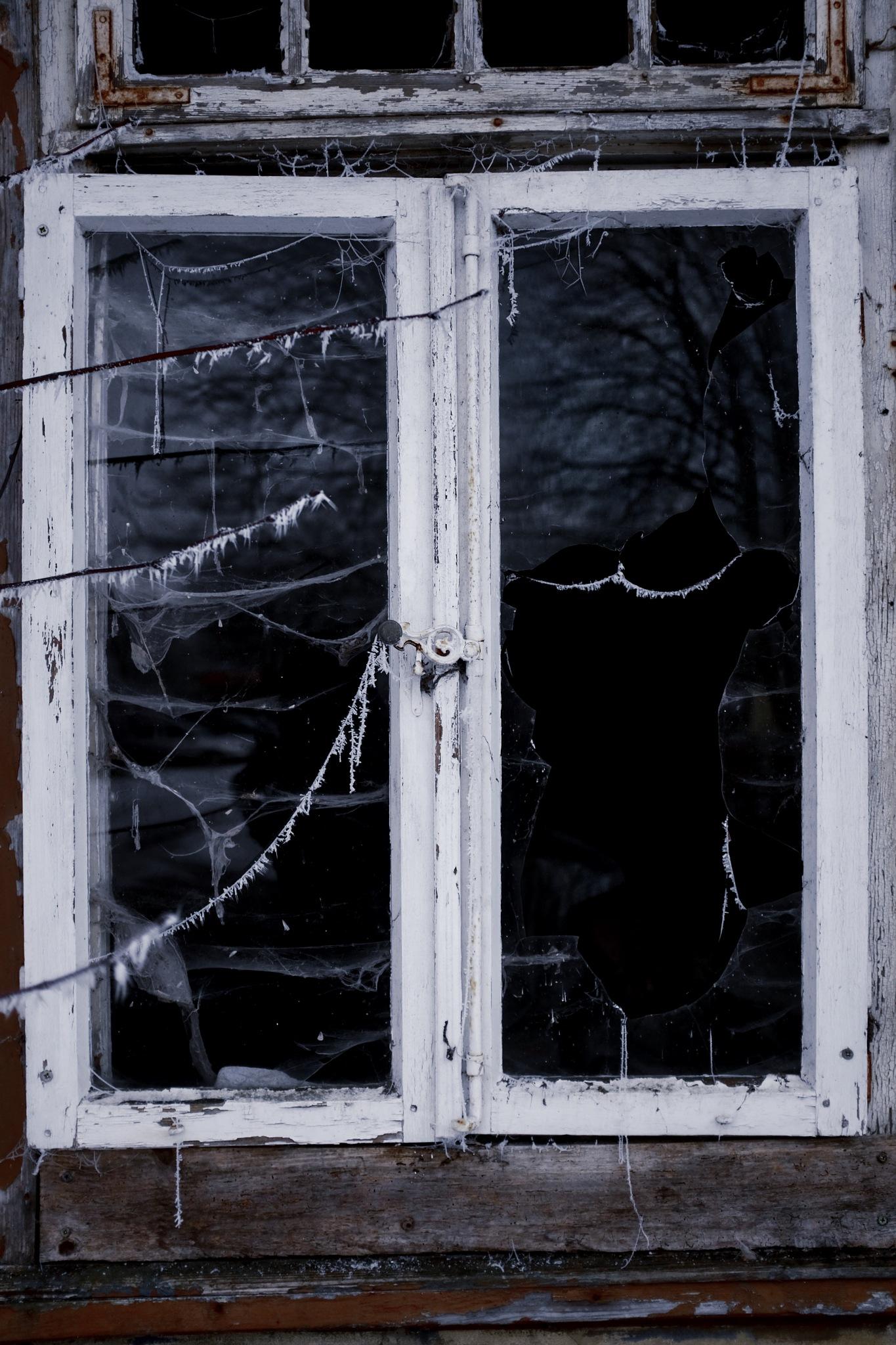 Window by peterkryzun