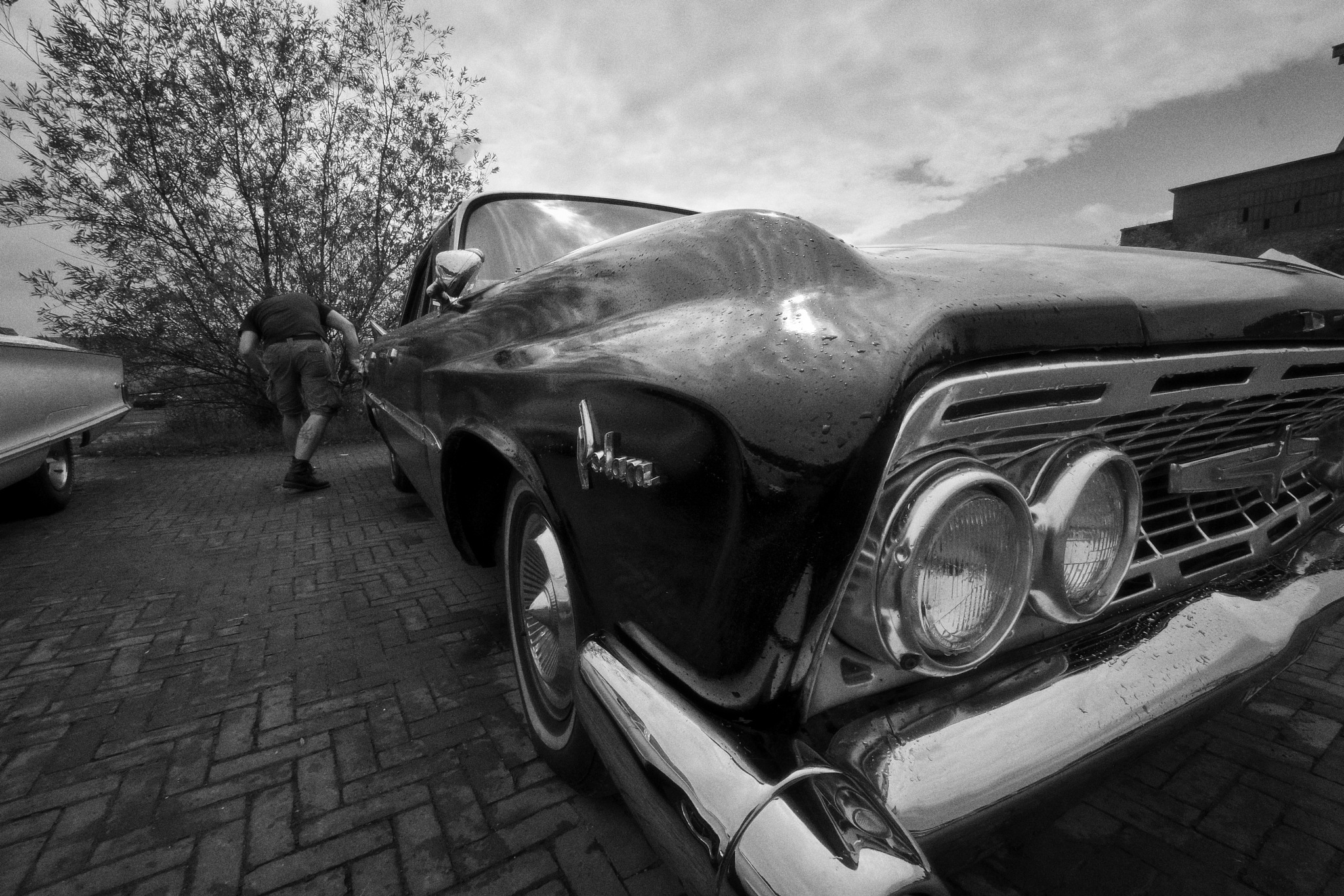 Photo in Vehicle #car #oldtimer #dodge