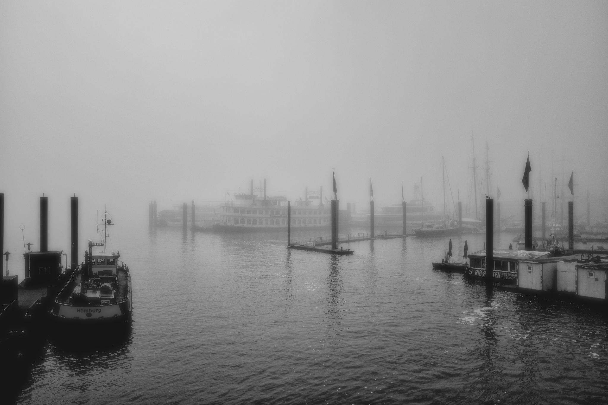 In Hamburg an der Elbe by peterkryzun