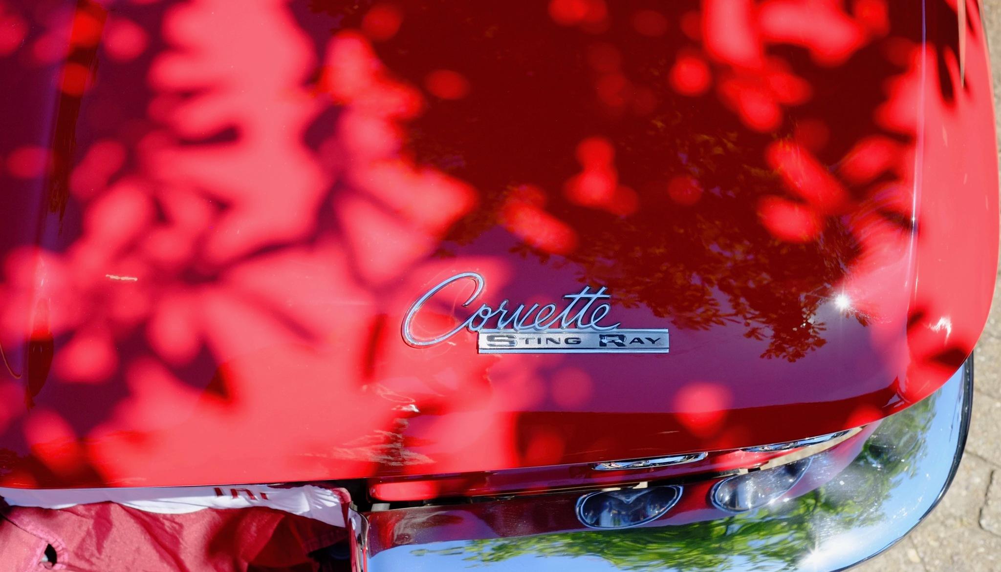 Little Red Corvette by peterkryzun