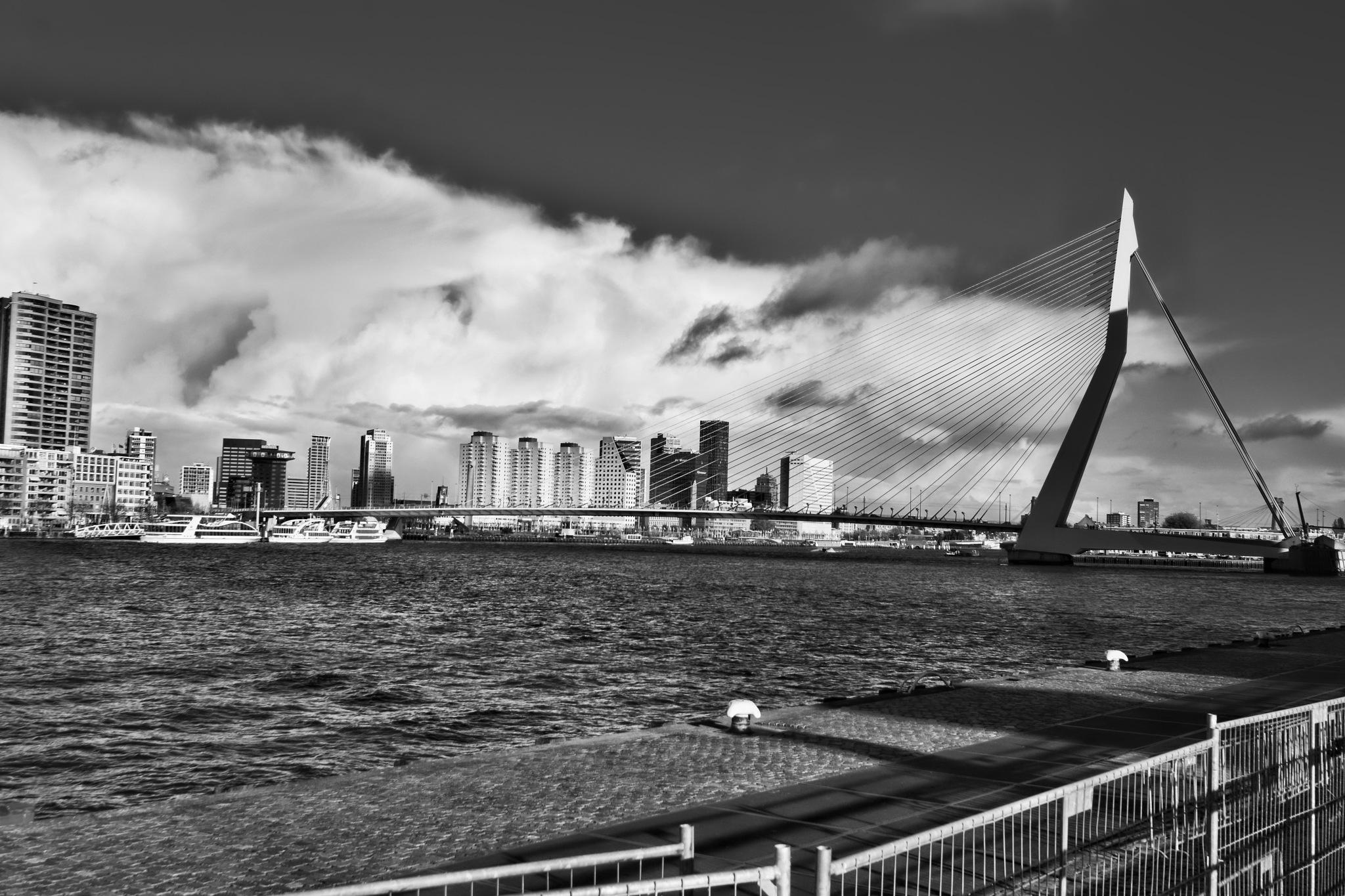 Photo in Architecture #rottrdam