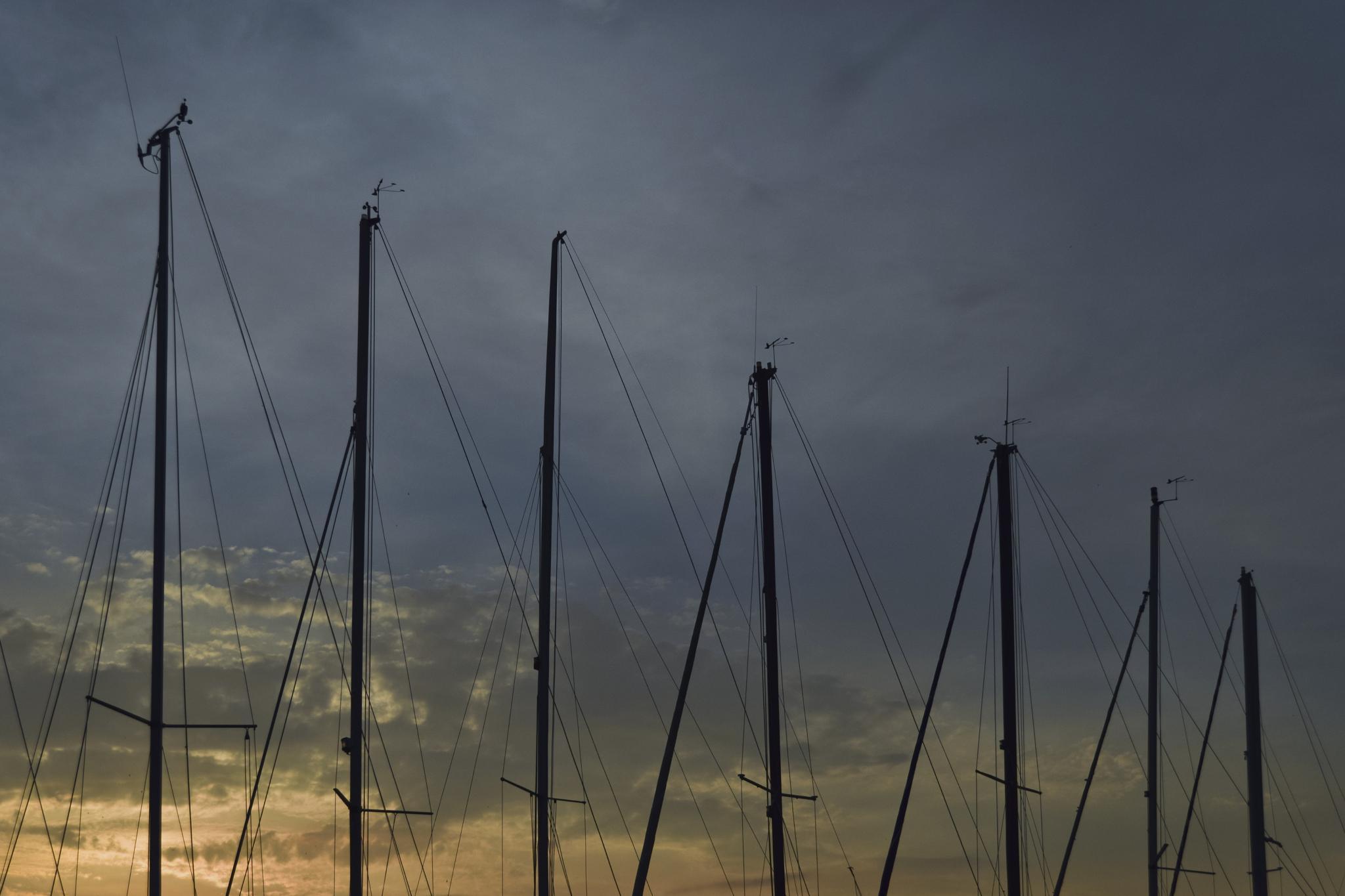 Untitled by Fabio Ernesto Francesco Magni