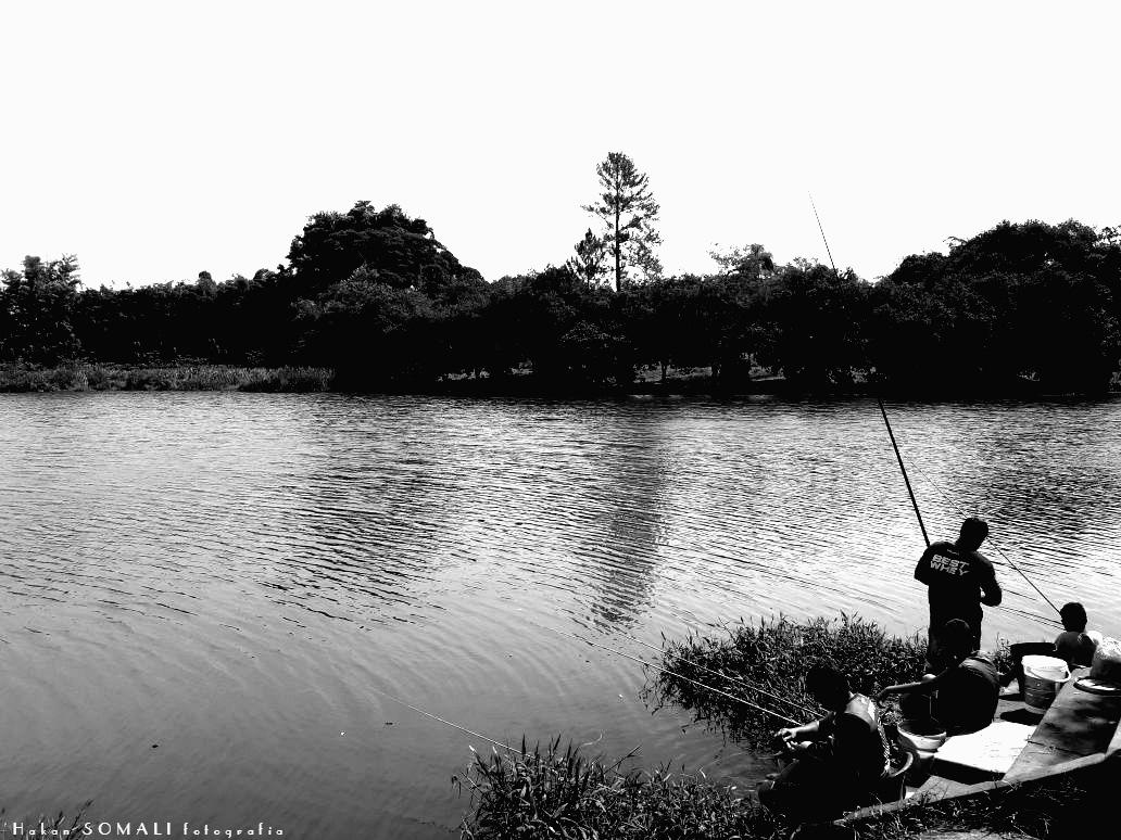 Pescaria em Associação Atlética Banco do Brasil / Bauru by Hakan Somali