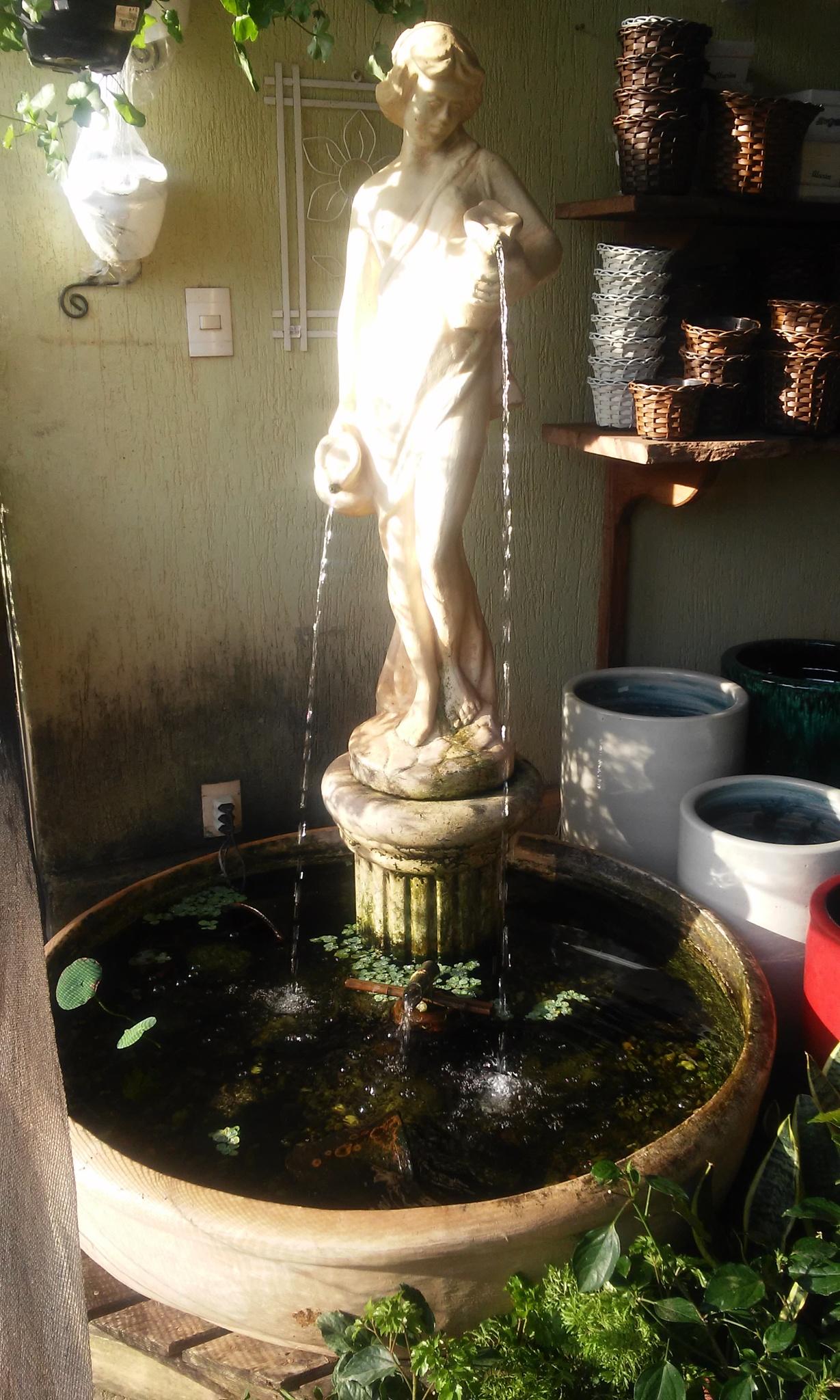 Fonte de água do jardim by Hakan Somali