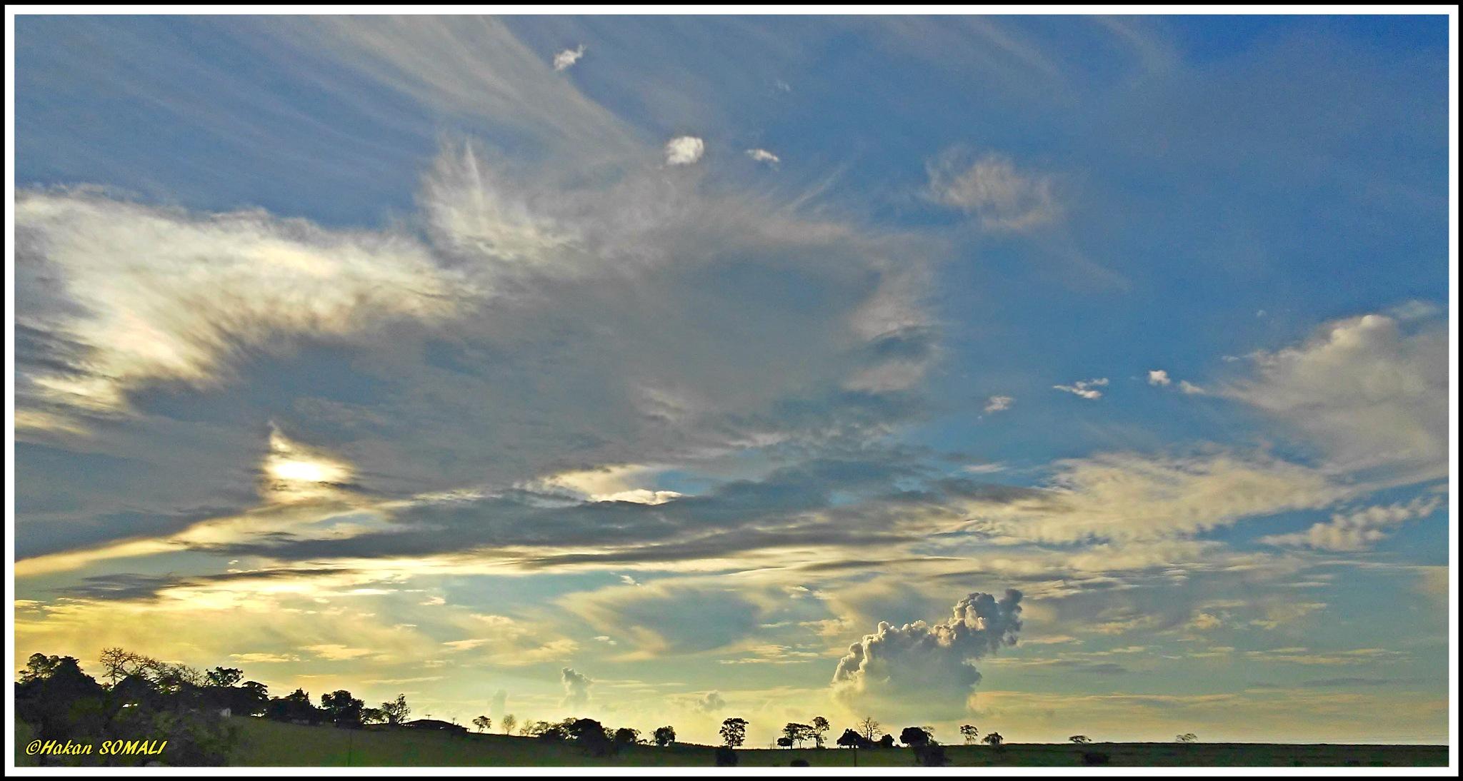 Beautiful cloud formations in rural area of São Paulo / Brazil by Hakan Somali