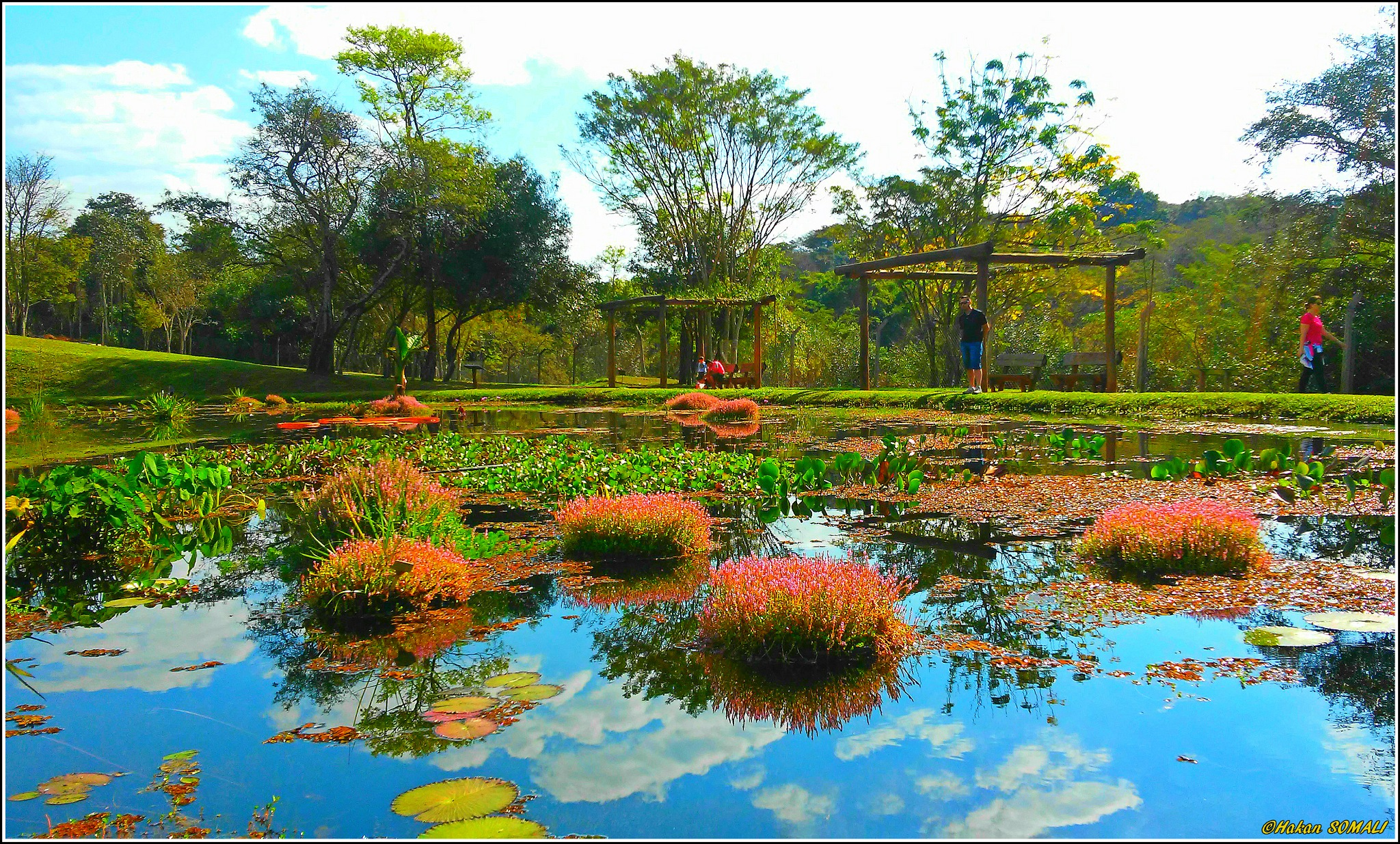Paisagem I - Jardim Botânico Municipal de Bauru / São Paulo by Hakan Somali