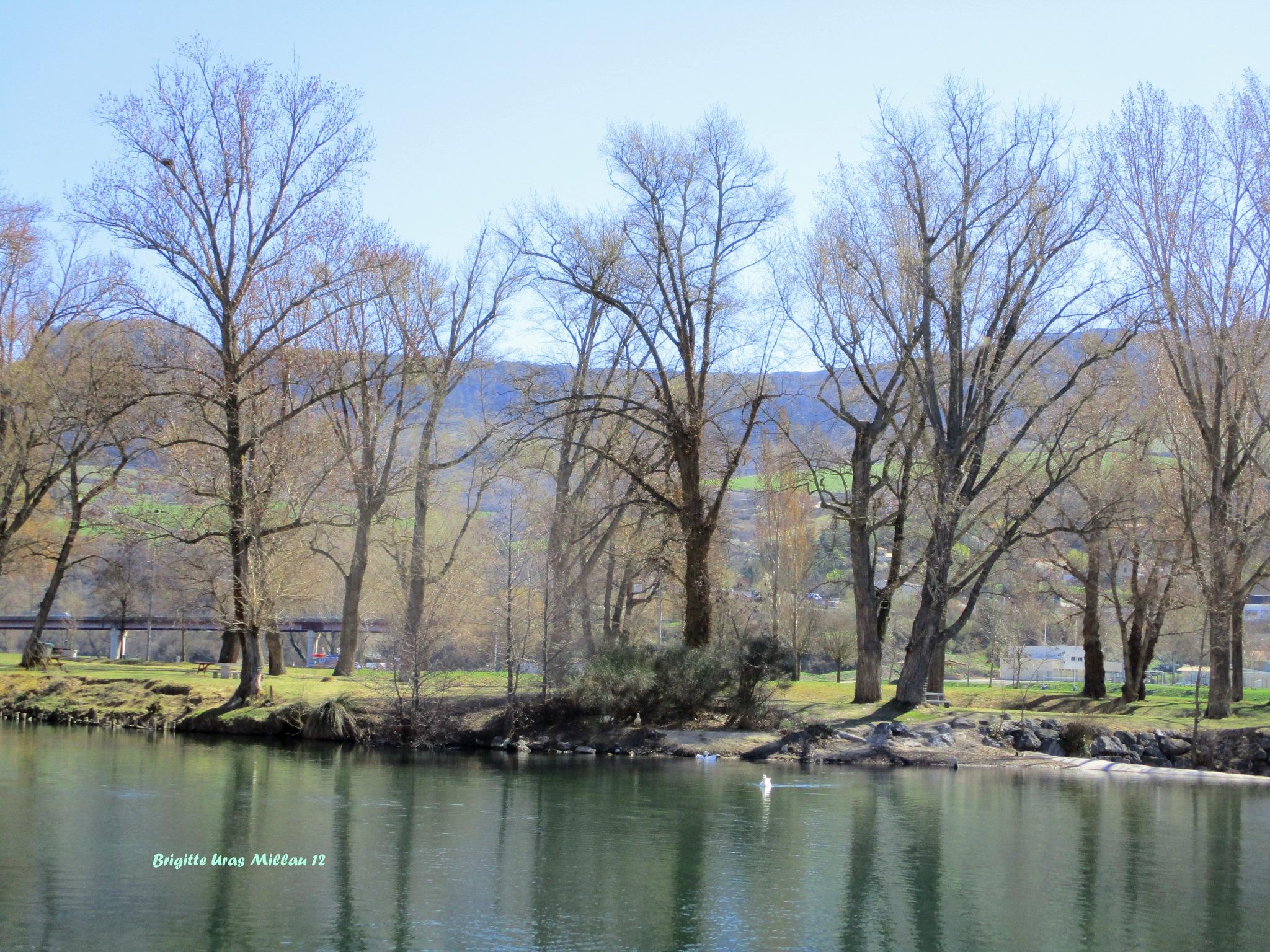 Les bords de la rivière by Brigitte Uras