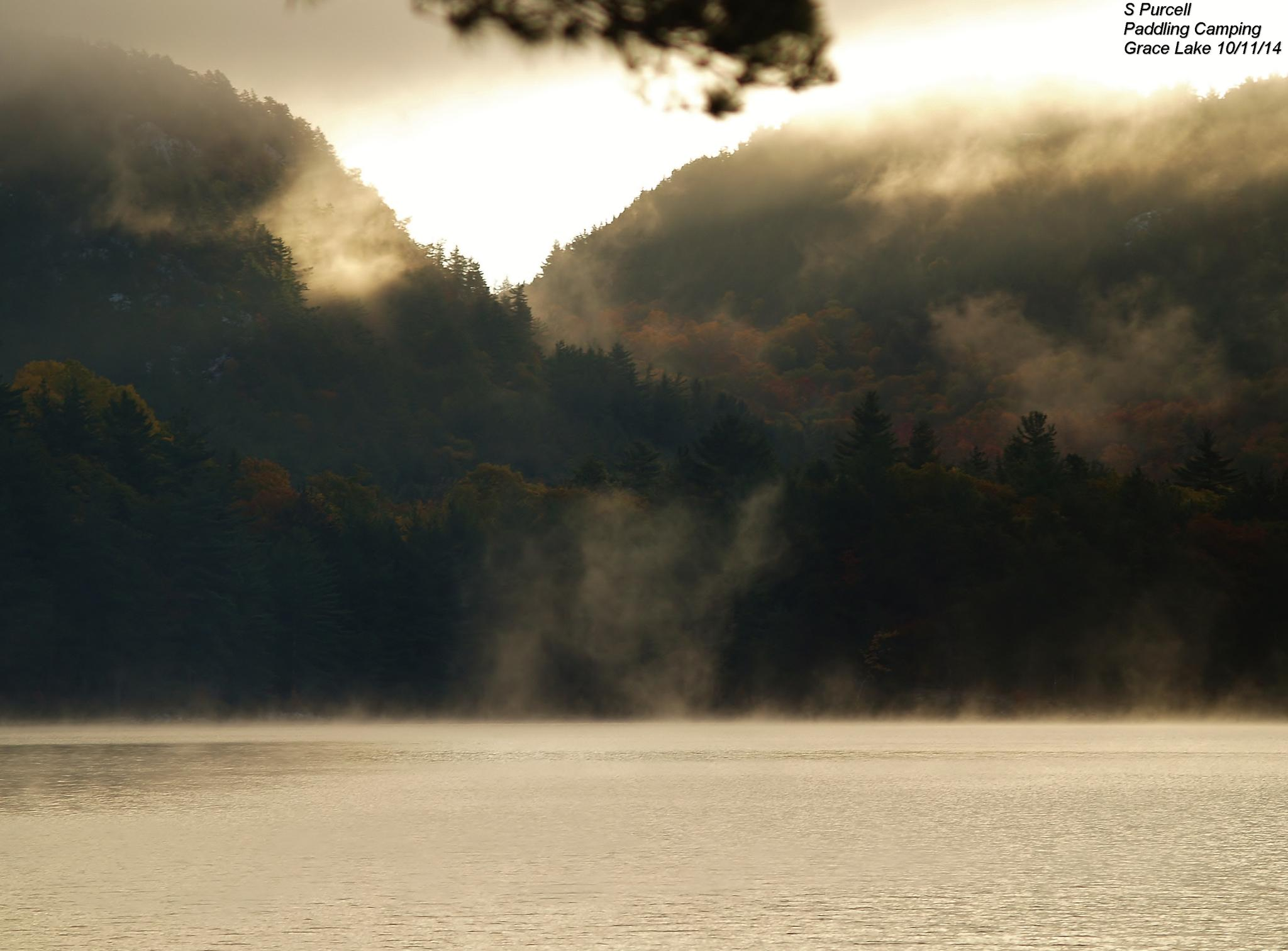Wilderness awakening  by Sean Purcell