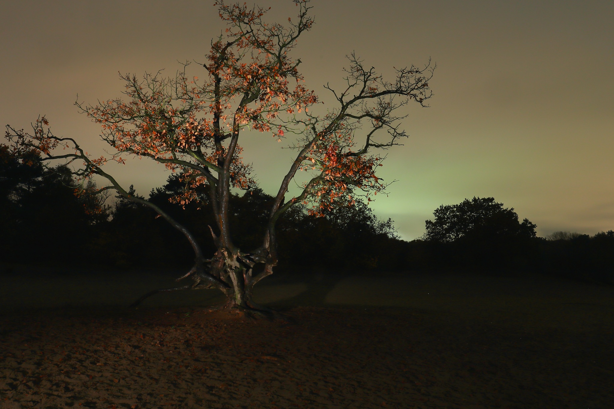 Nachtfotografie by agwstroop