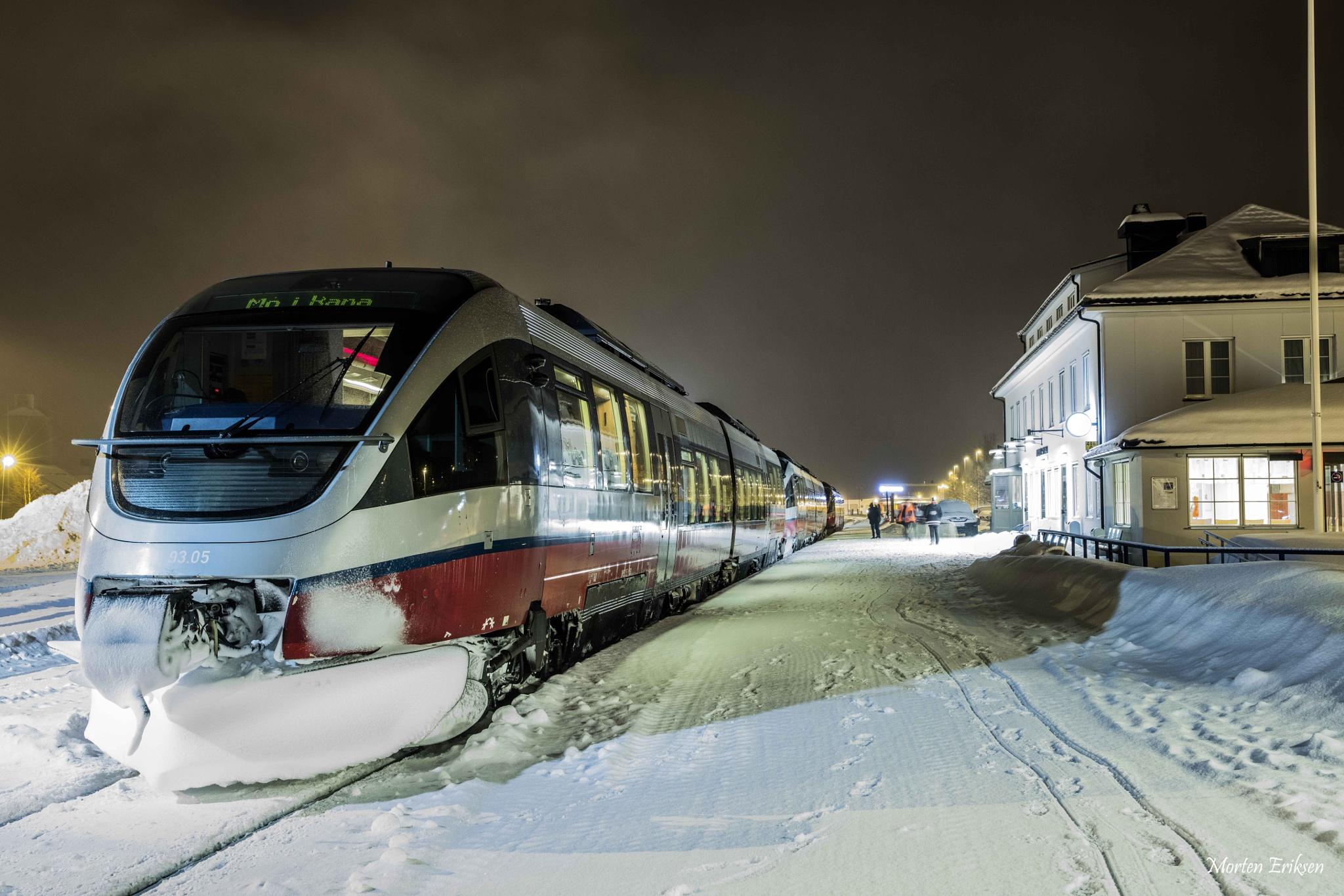 Train by Morten Eriksen