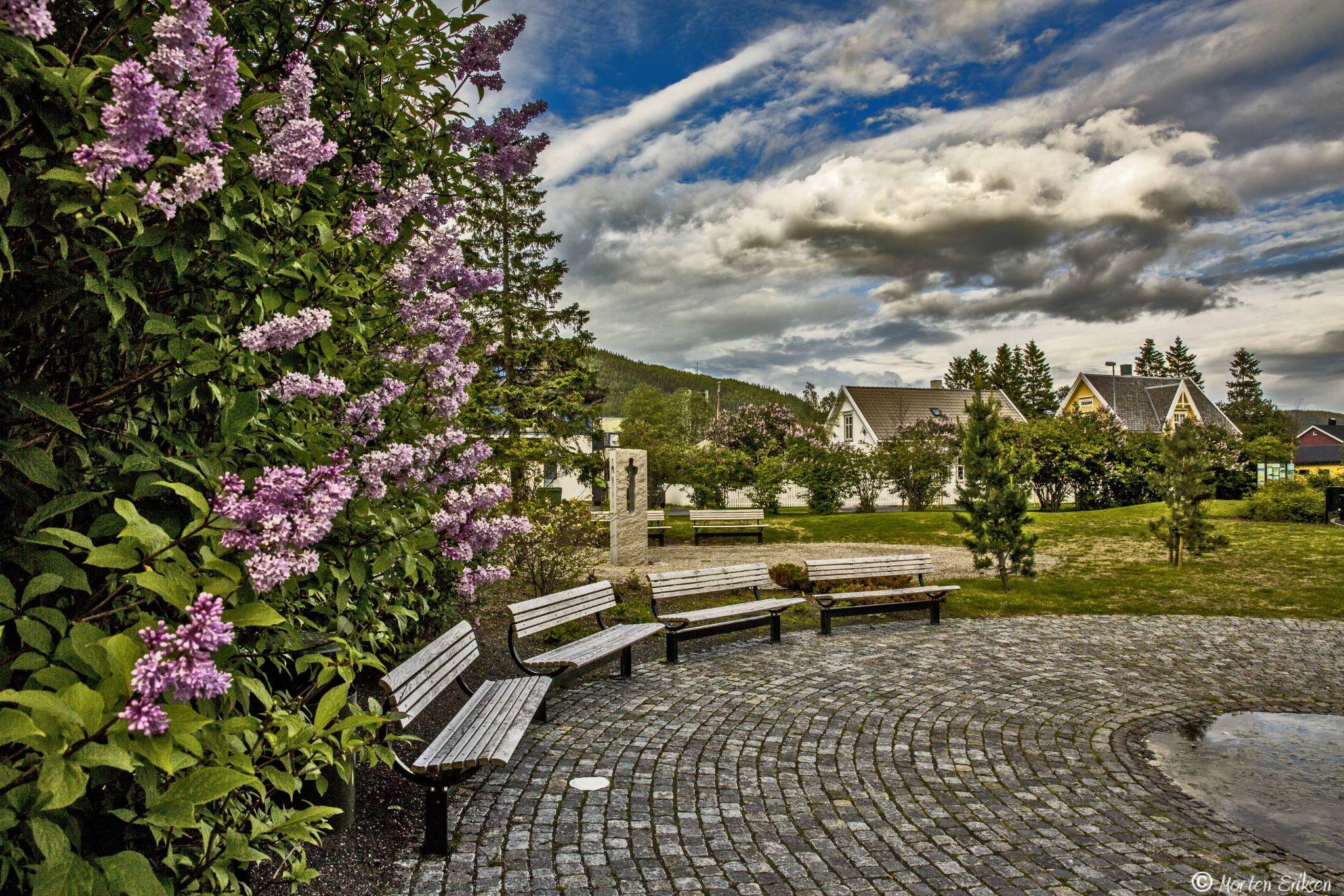 A walk in the park by Morten Eriksen