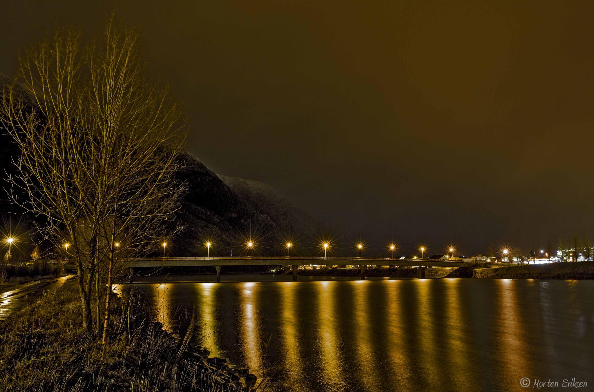 The Bridge by Morten Eriksen