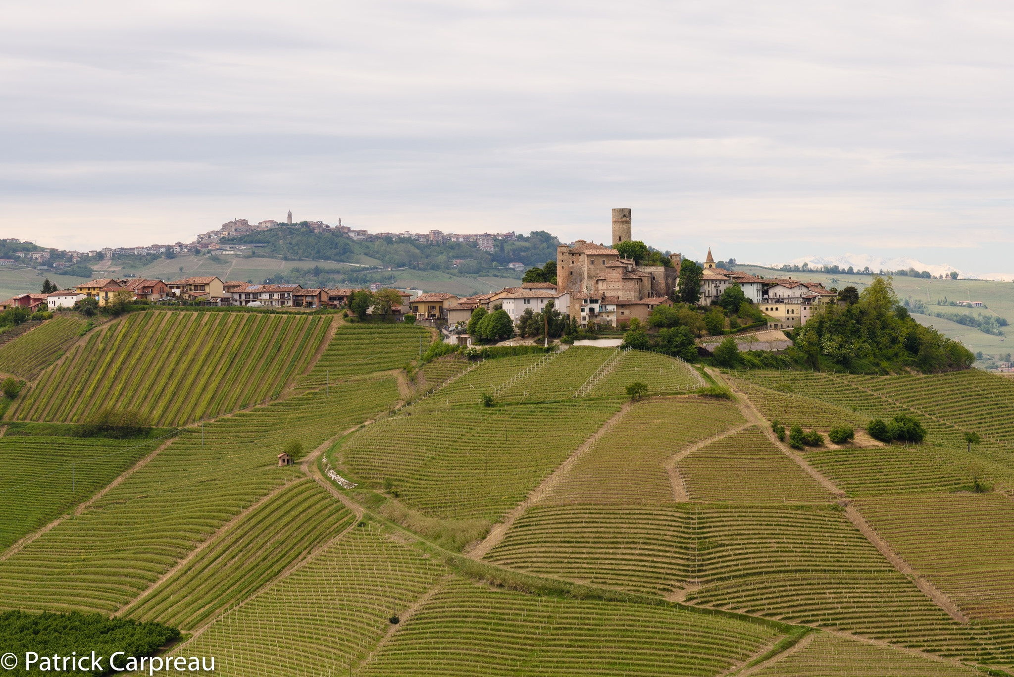 Photo in Landscape #piemonte #italy #langhe #serralunga #barollo #wine #panorama #landscape #hill #outdoor #wineyard #village