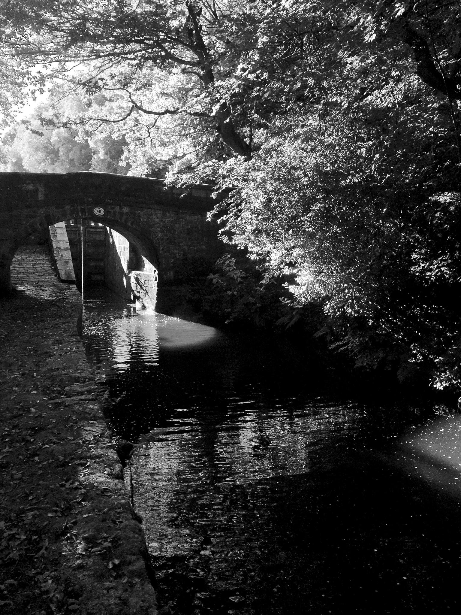 Huddersfield Narrow Canal, near Marsden 1. Oct 2015 by Mike Freel