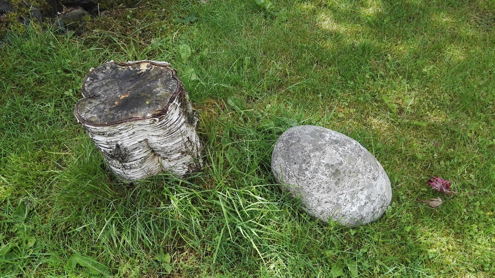 Stub and Stone by Lars-Toralf Utnes Storstrand