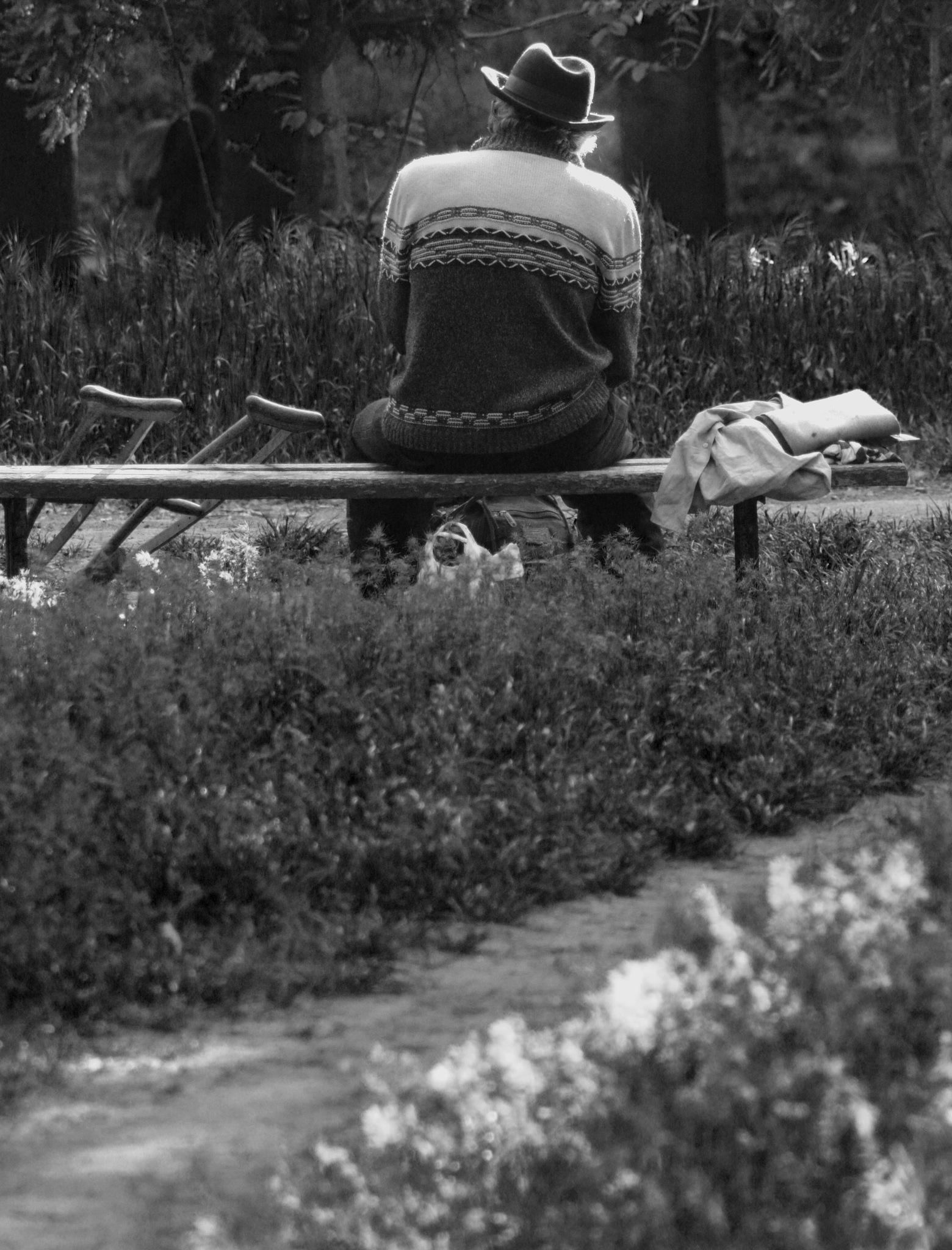 Old man on a Park Bench by Lars-Toralf Utnes Storstrand