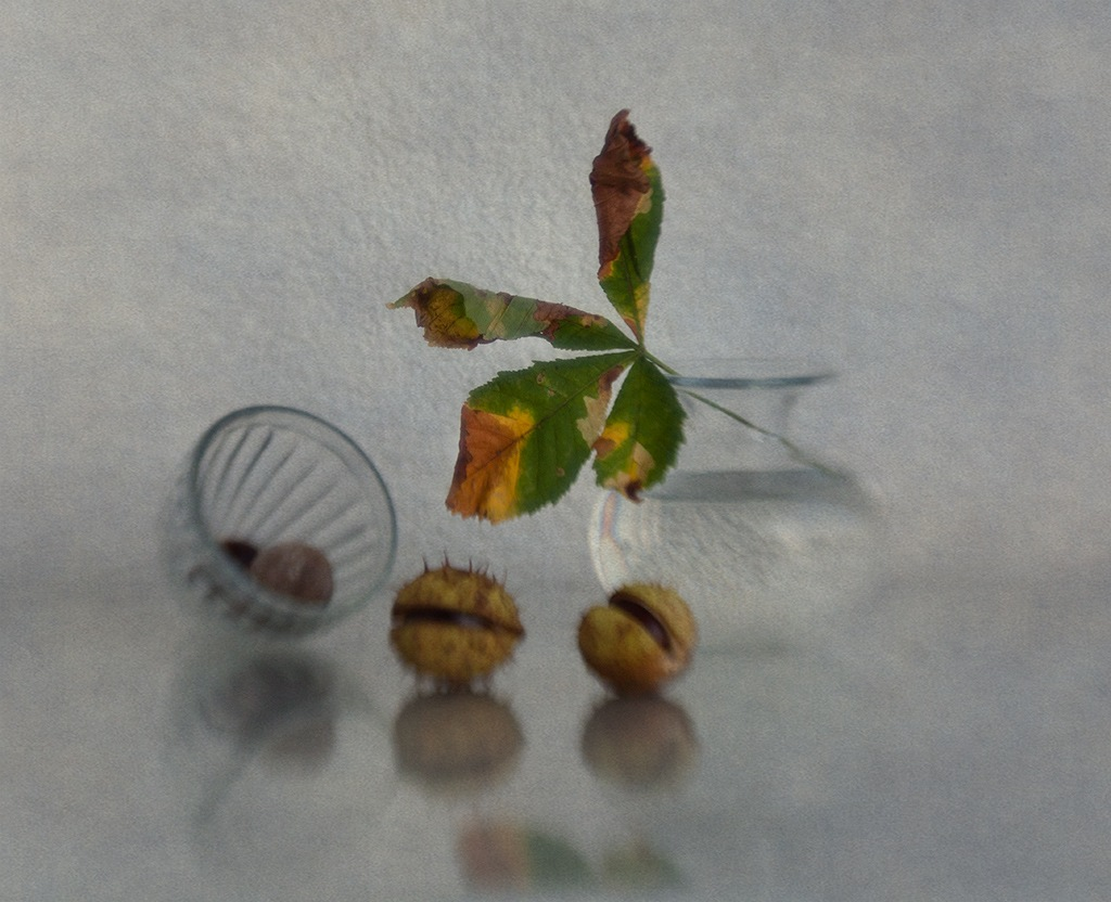 autumn impression by Anna Klinkosz