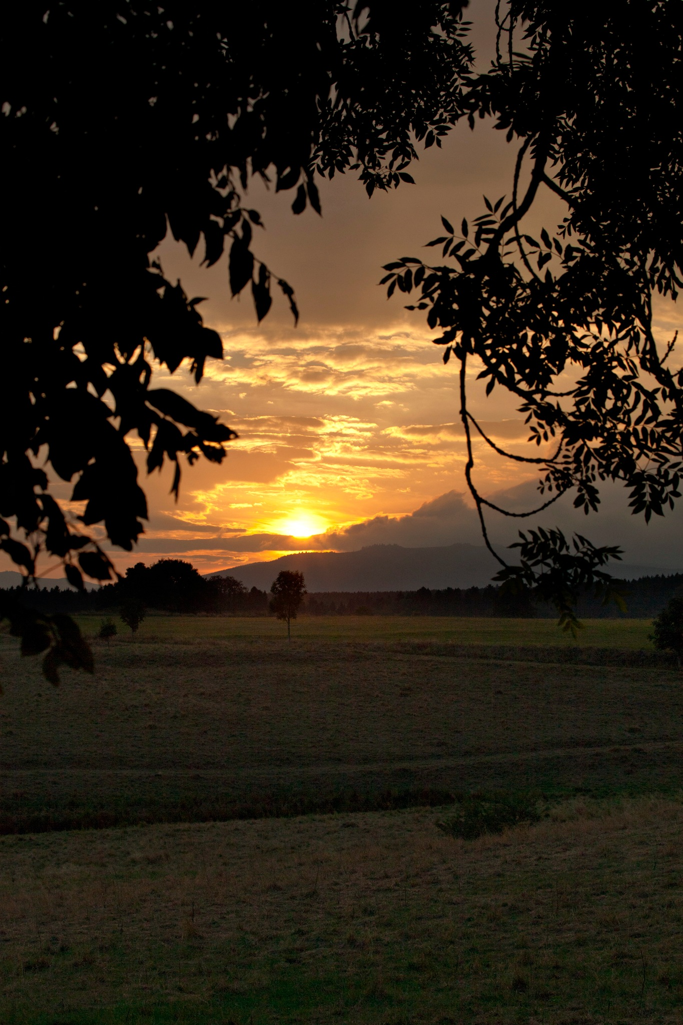 ... the last sunrays – beautiful by Ines Linke