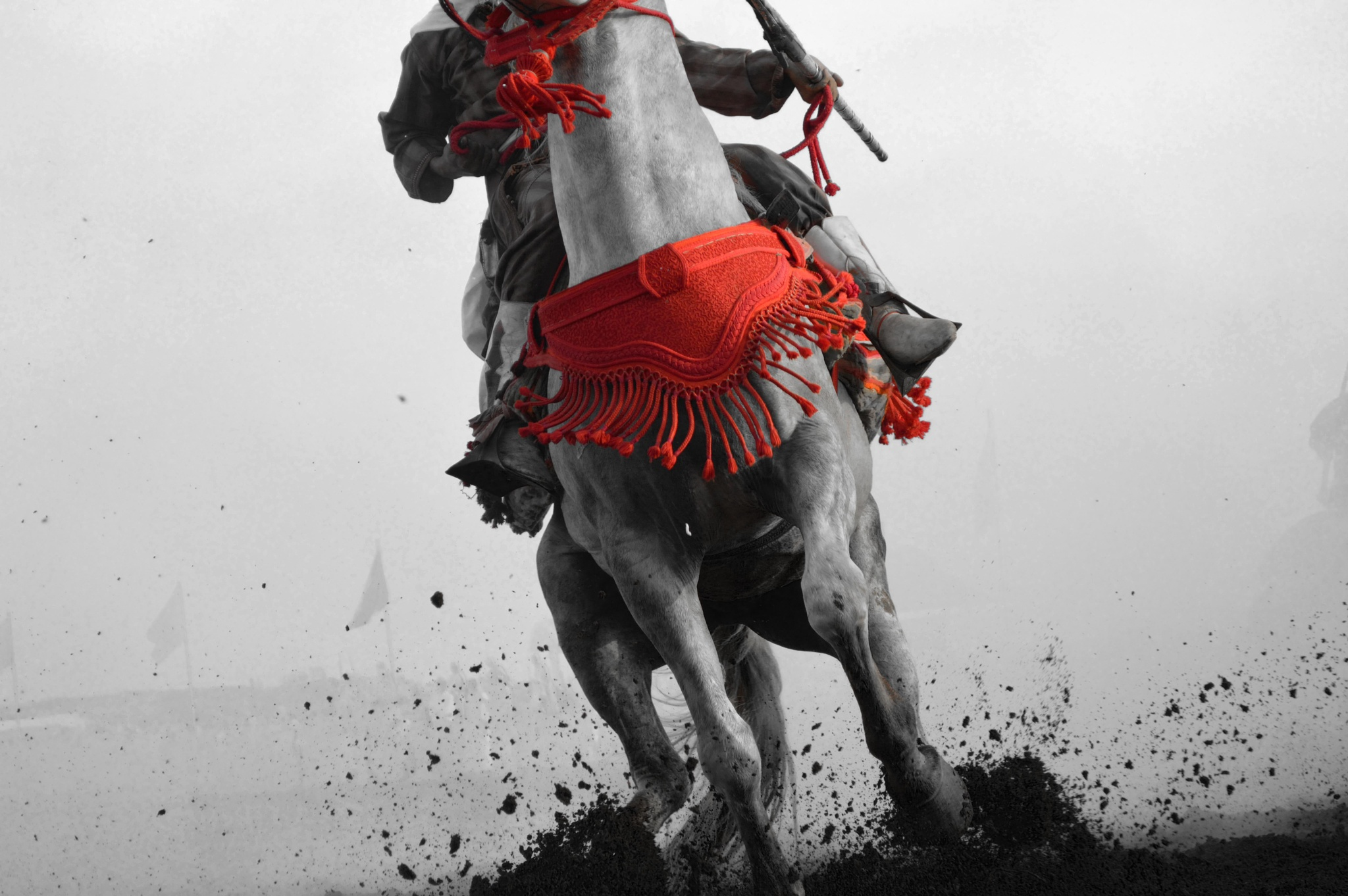 horse power by Brahim Echcharqy