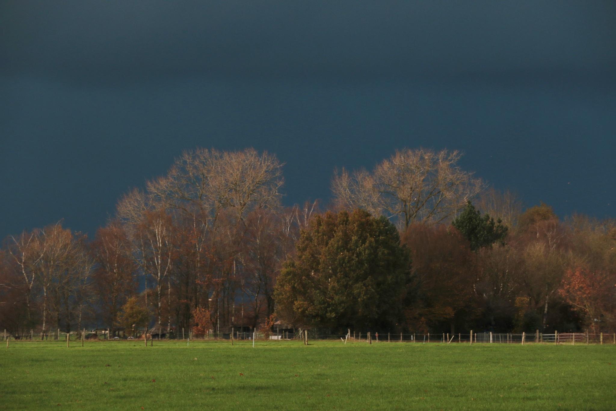 Dark clouds by Mirjam Mulder-Van Den Hof