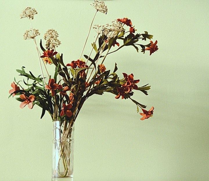 Untitled by Daniel Salas