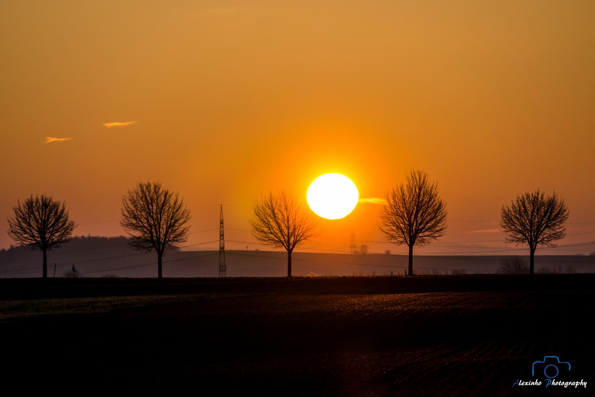 Sunrise by Alexandru VA