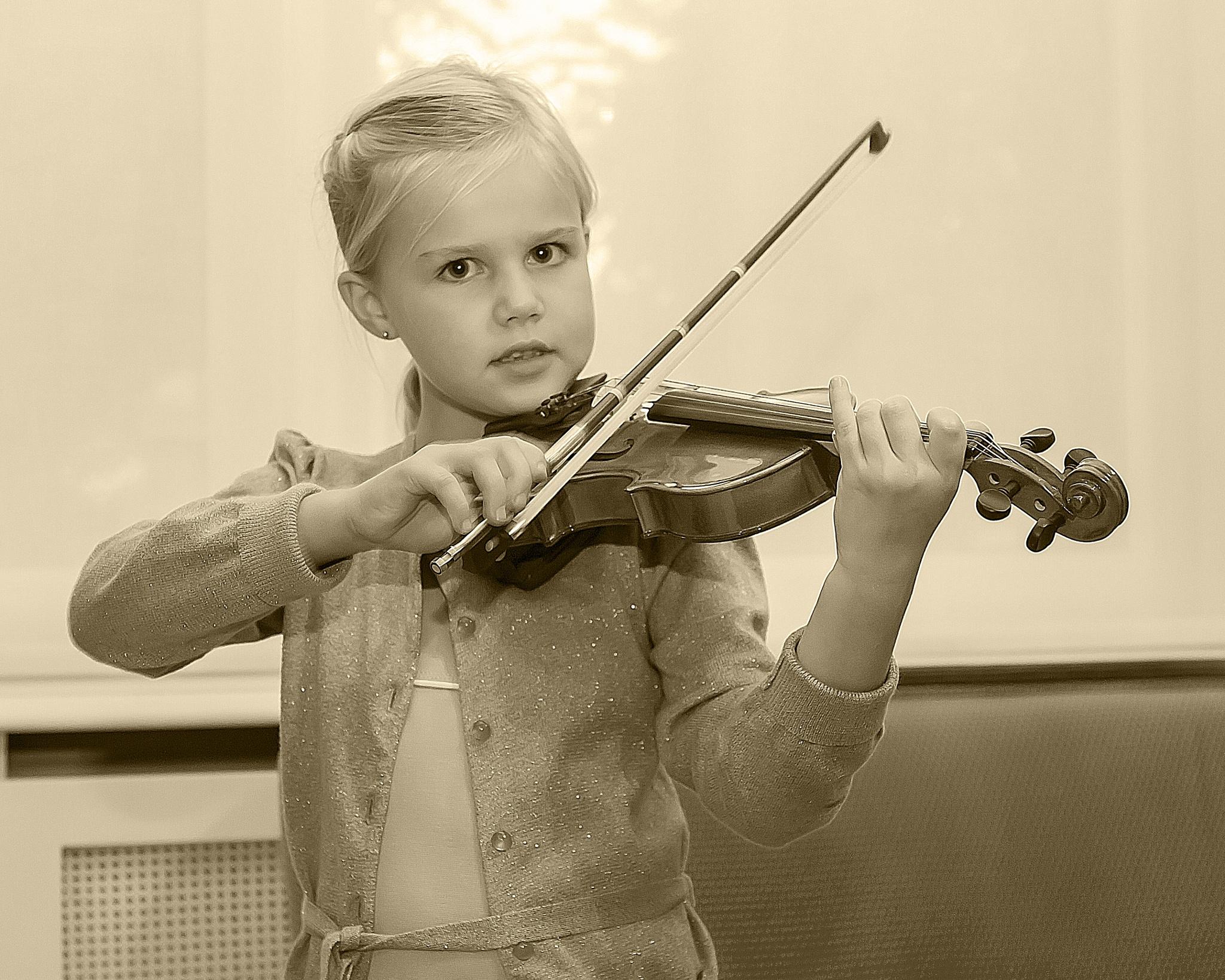 violon by Renaat