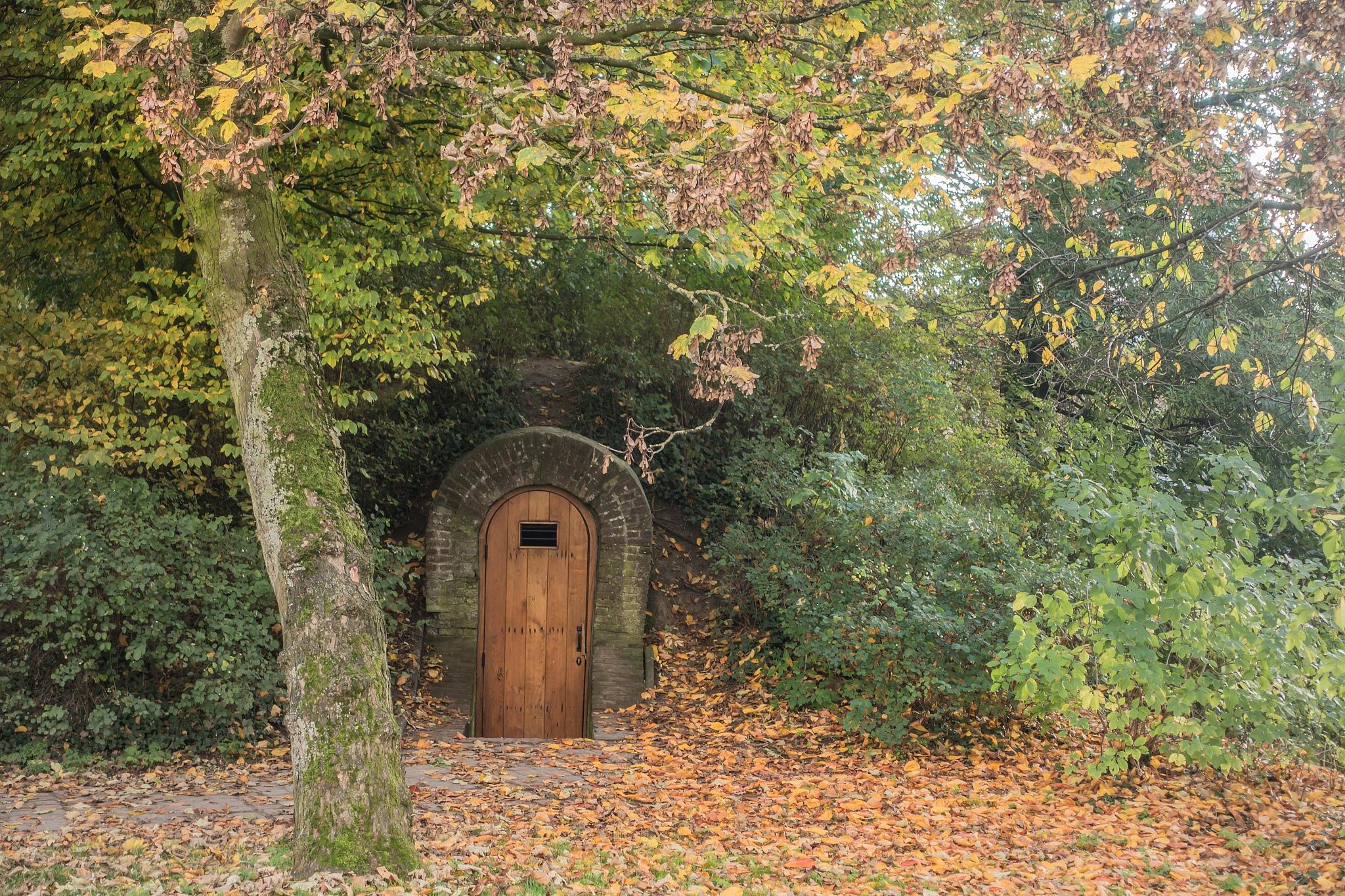 autumn by Renaat