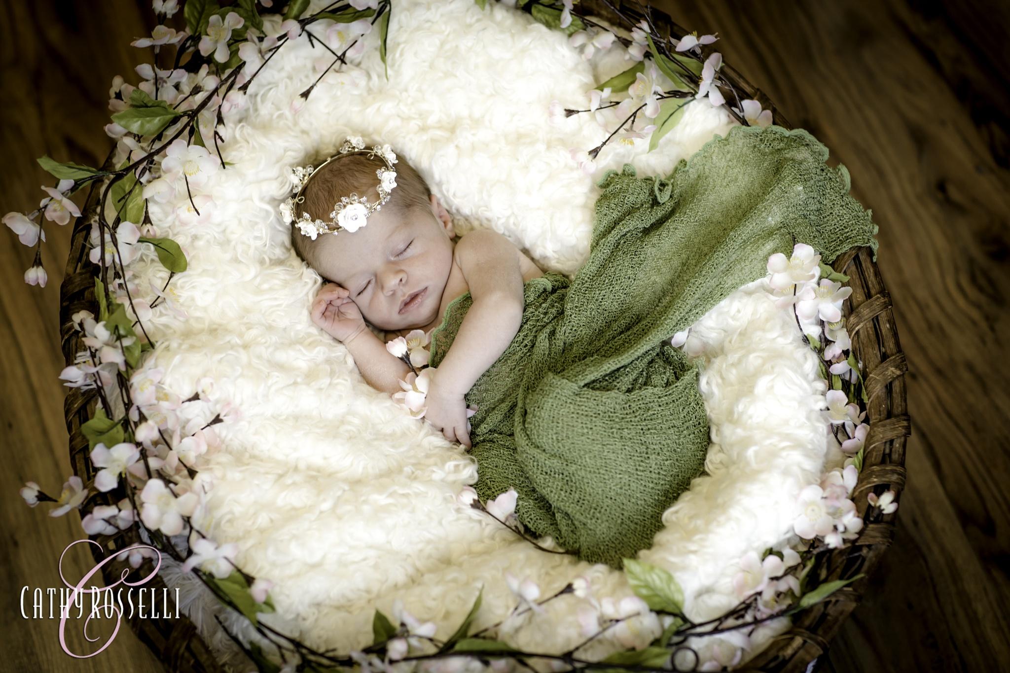 Sweet Dreams by cathyrossellistudios
