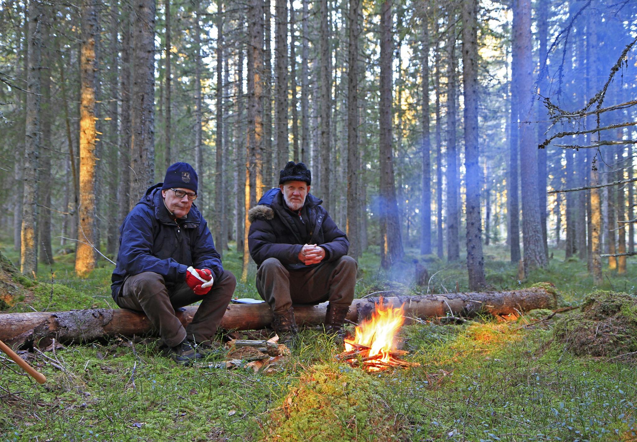 Värmande eld by alf pallin