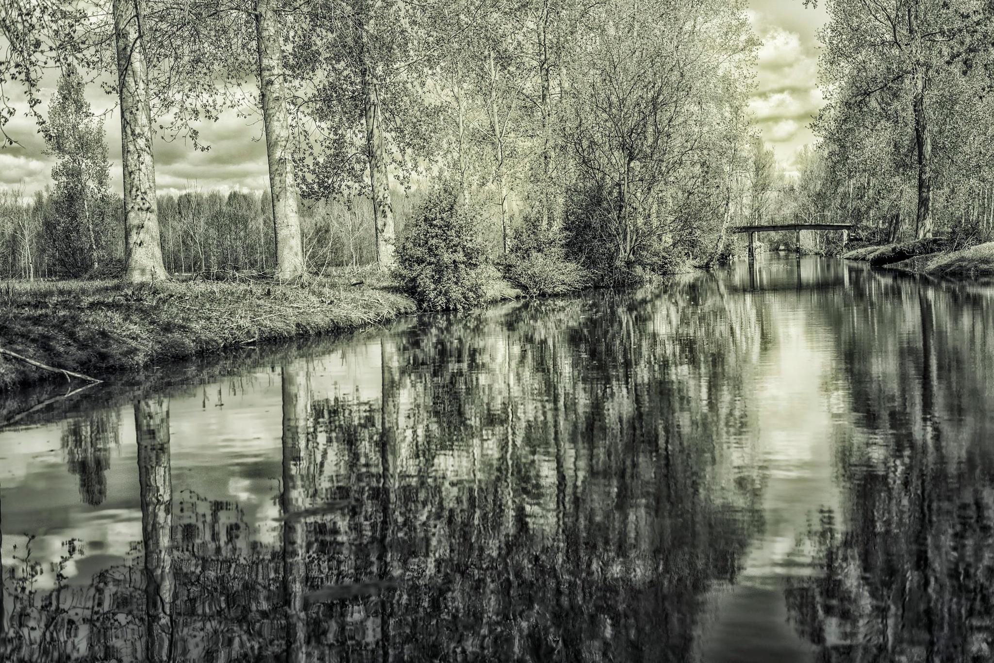 Untitled by Cœuru Yann