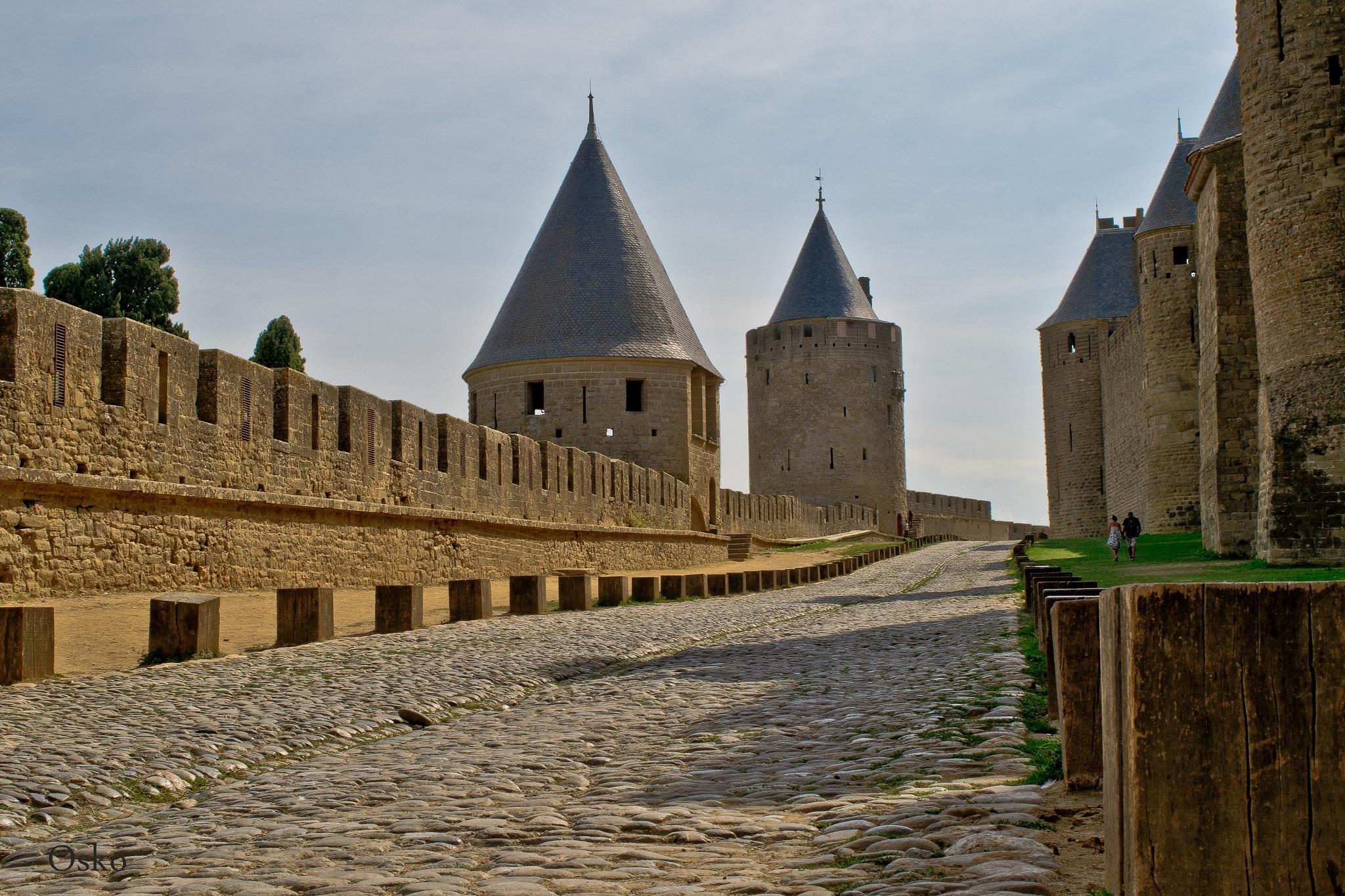 Entre las murallas de Carcassonne by oscarruben_suarez