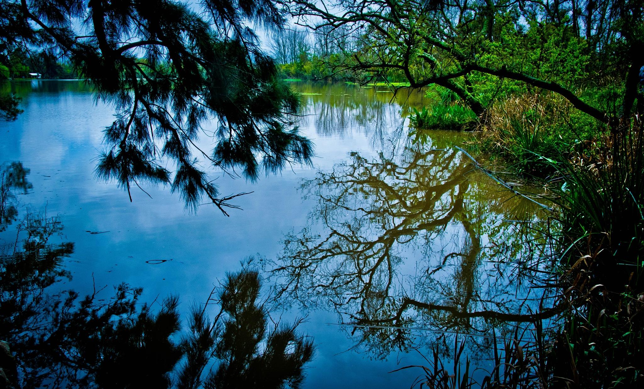 Reflejos en el Delta de Tigre by oscarruben_suarez