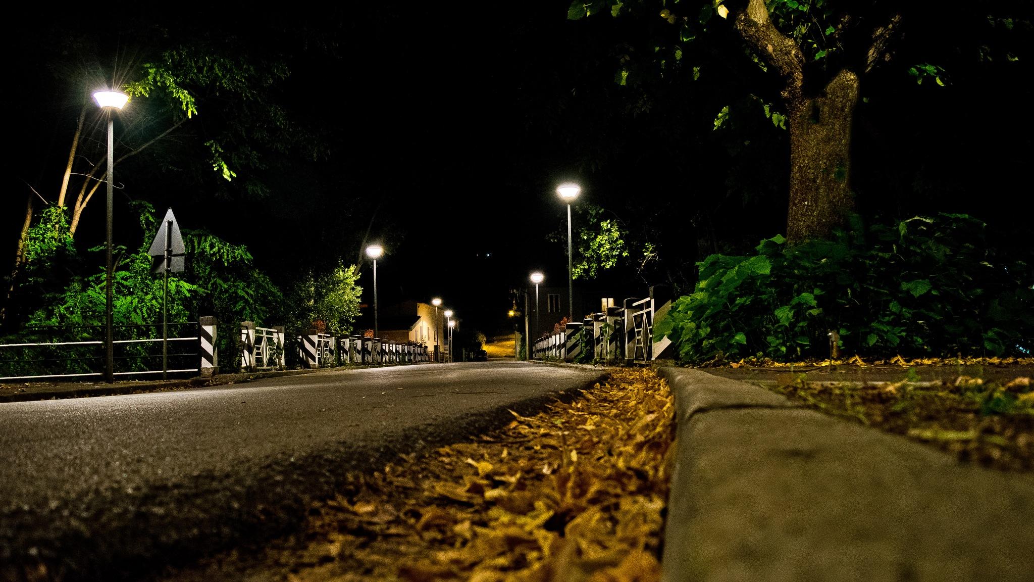 Otoño nocturno by oscarruben_suarez