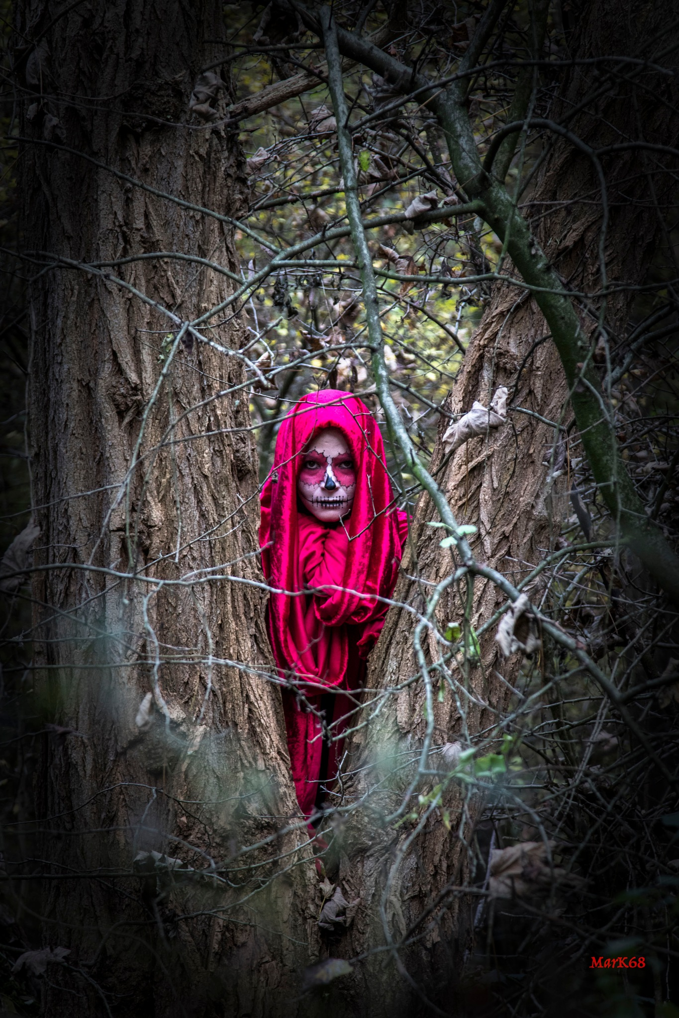 Promenons nous dans les bois by Marc Kurowski