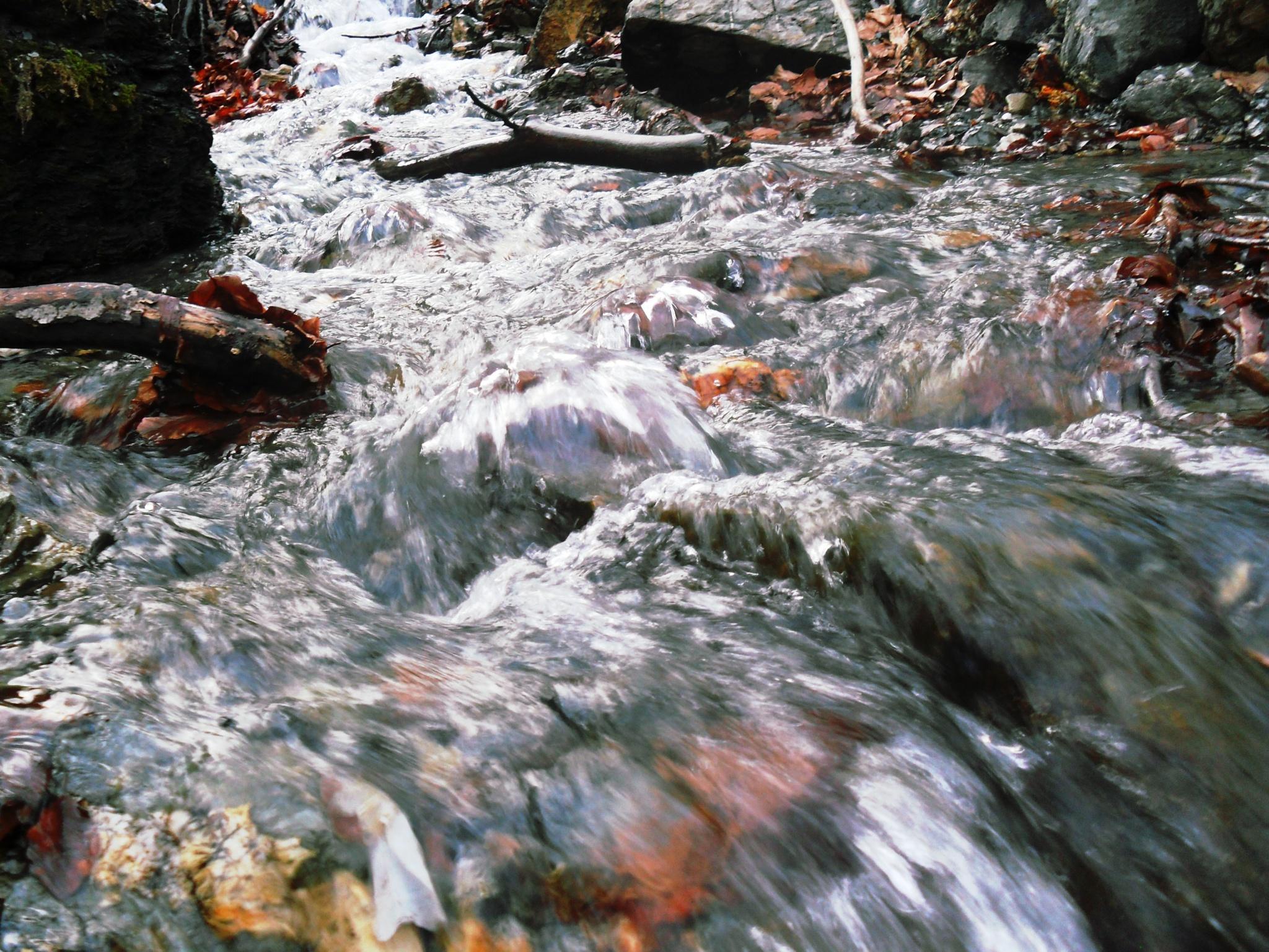 Water by Mensur H. Luma