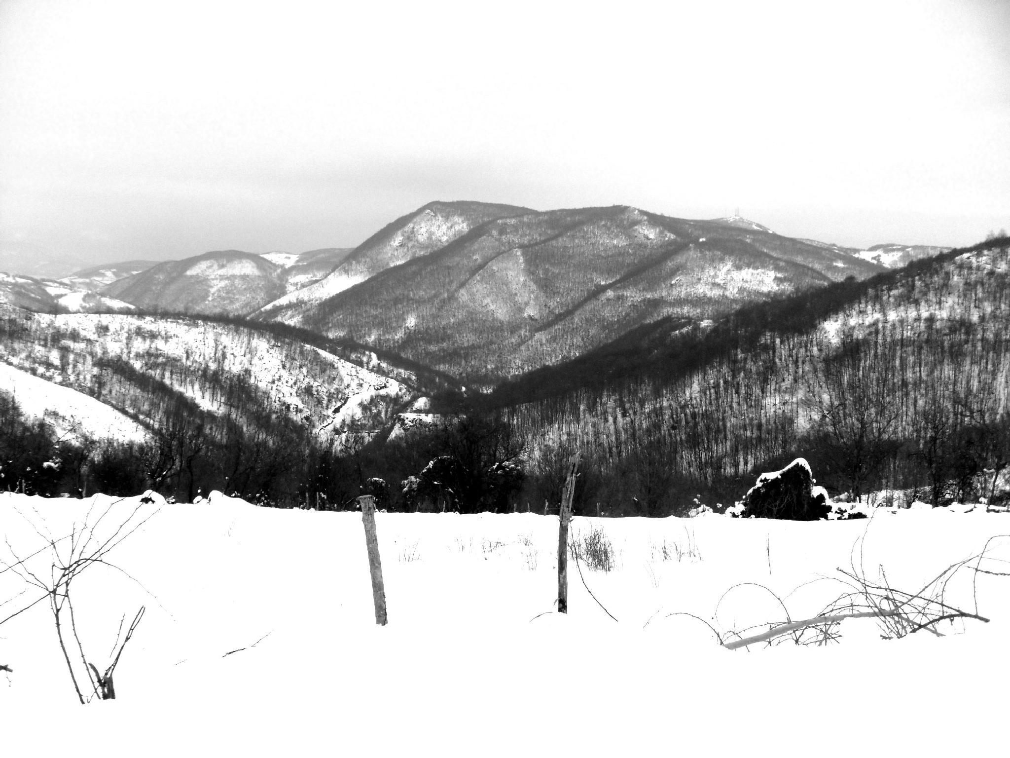 Soft Winter by Mensur H. Luma