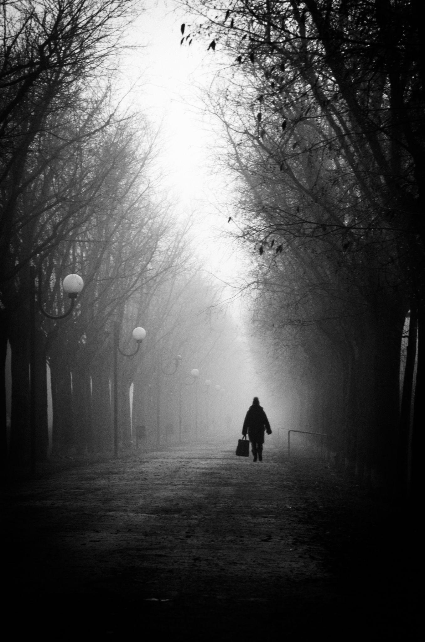 Alone by Mirco Balboni