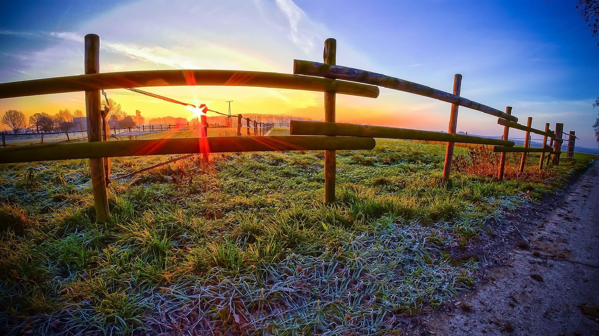 Frosty Sunrise by Manuel Wieler