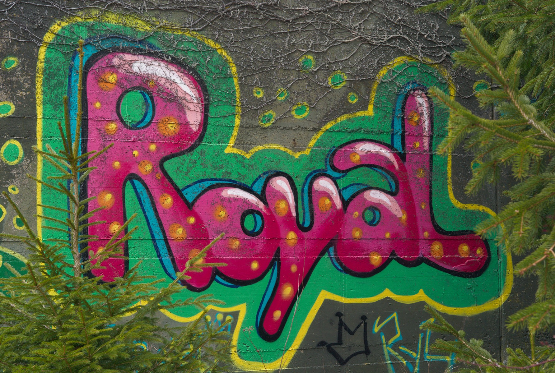 Royaltrees by Funktrainer