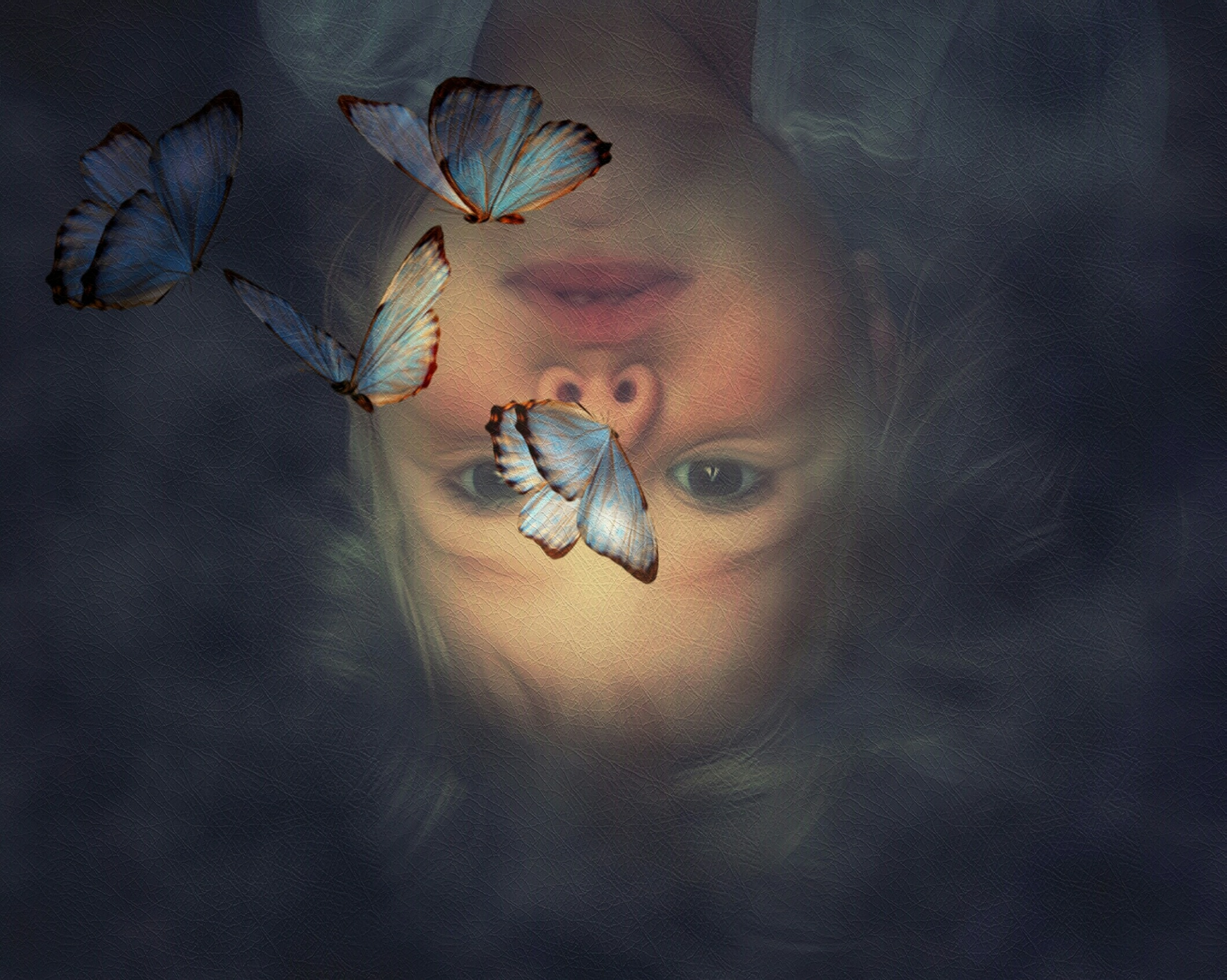 Upside Down! by Minimeme Photo Art