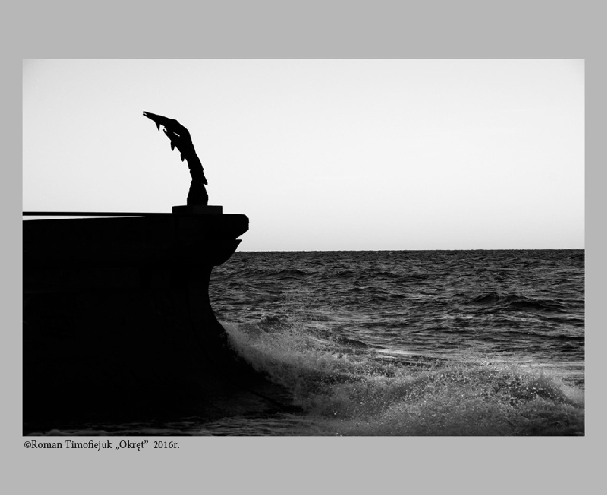 Untitled by Roman Timofiejuk