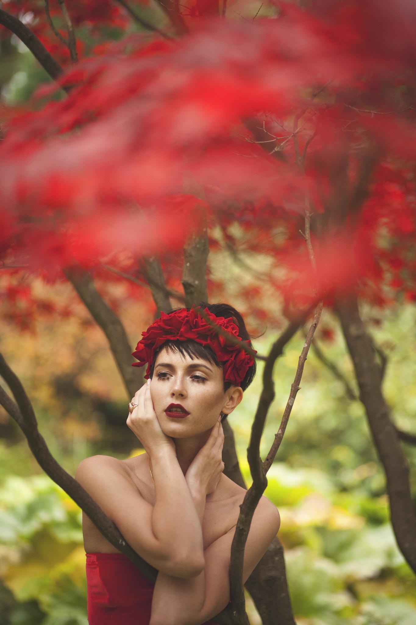 The Dreaming by Danniella Jaine