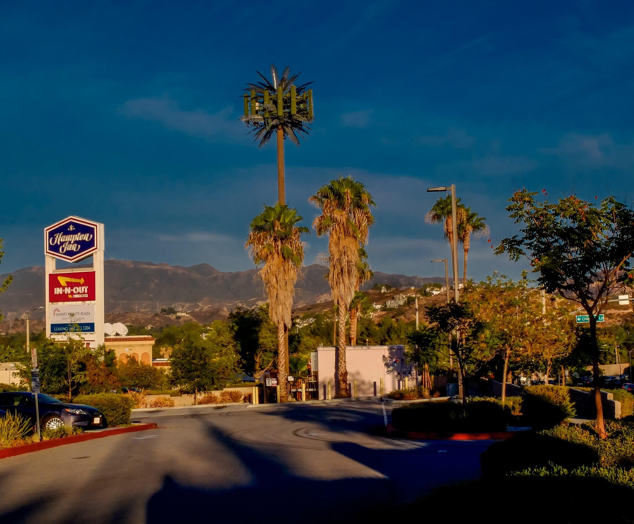 California dreaming by Alexander Hug