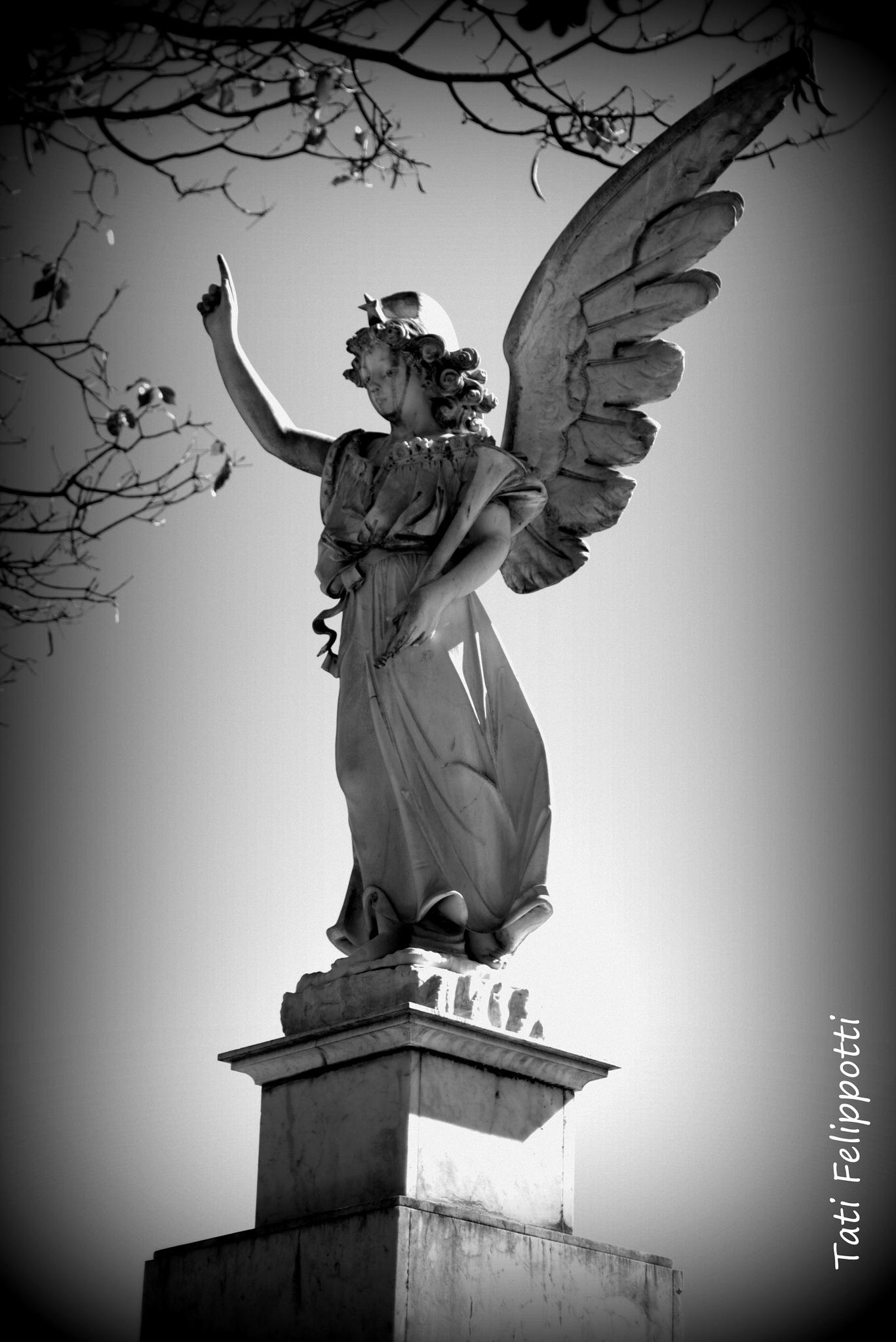 Cemetery's Angel by Tati Felippotti