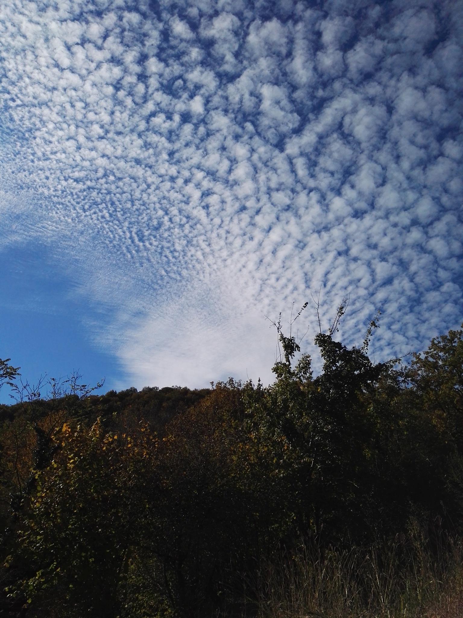 martvili,s sky by Ariyapour